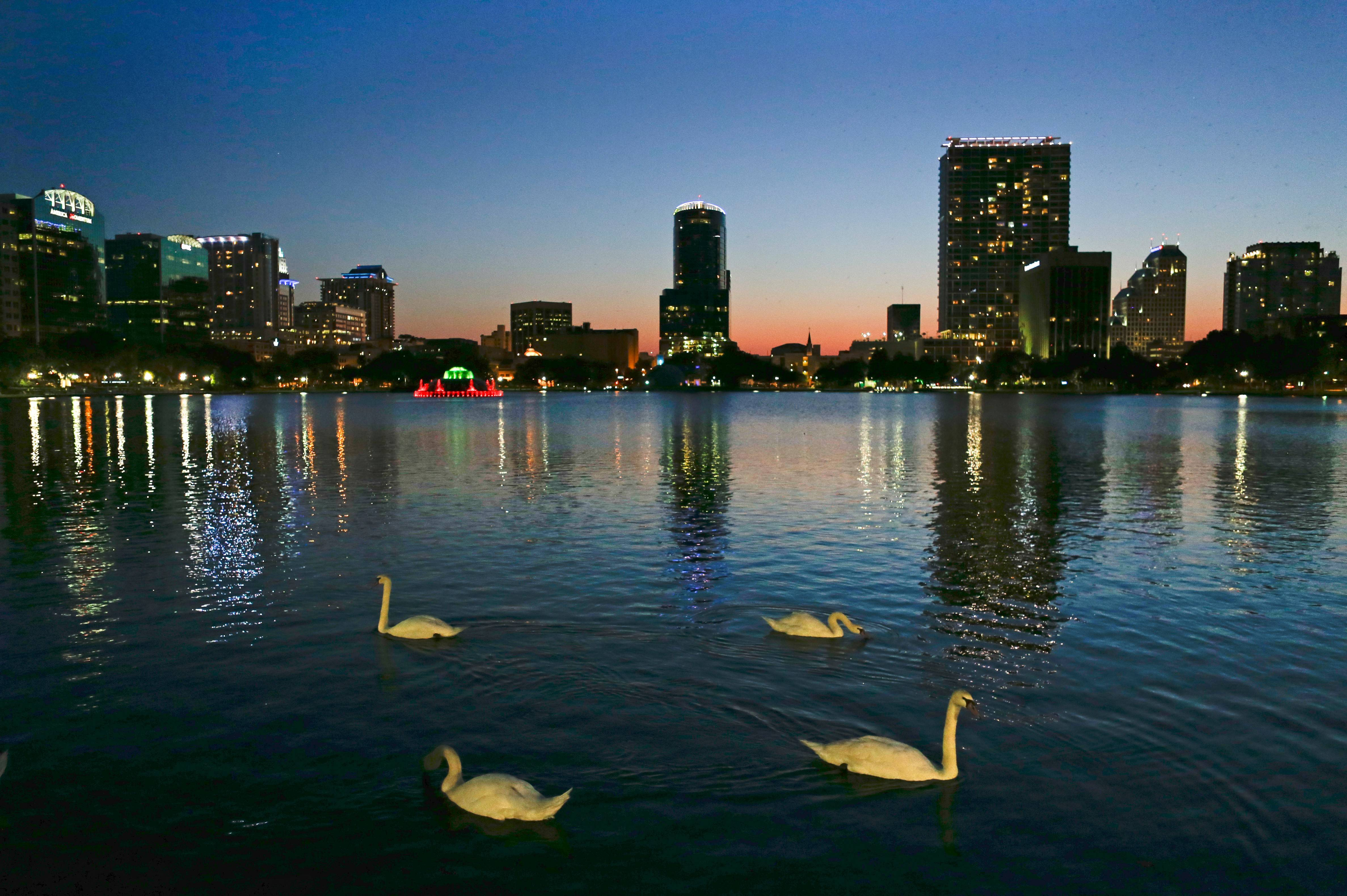 Swans swim in Lake Eola as the sun sets in Orlando, Fla. At the center of the lake is a five-decade-old, green, multitiered fountain that is the official icon of the city.