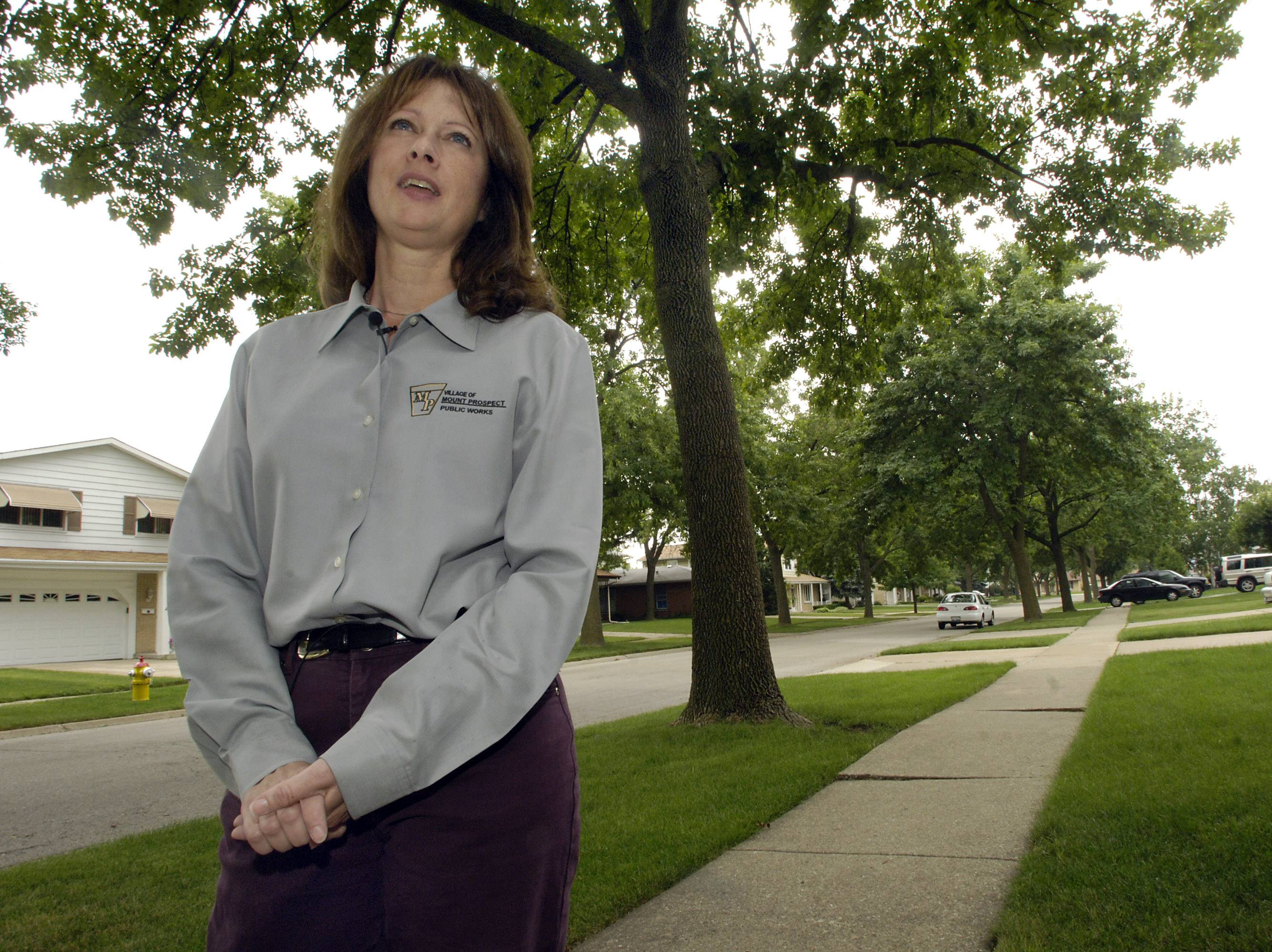 In 2006 Clark was one of the first in the suburbs to raise the alarm about the emerald ash borer.