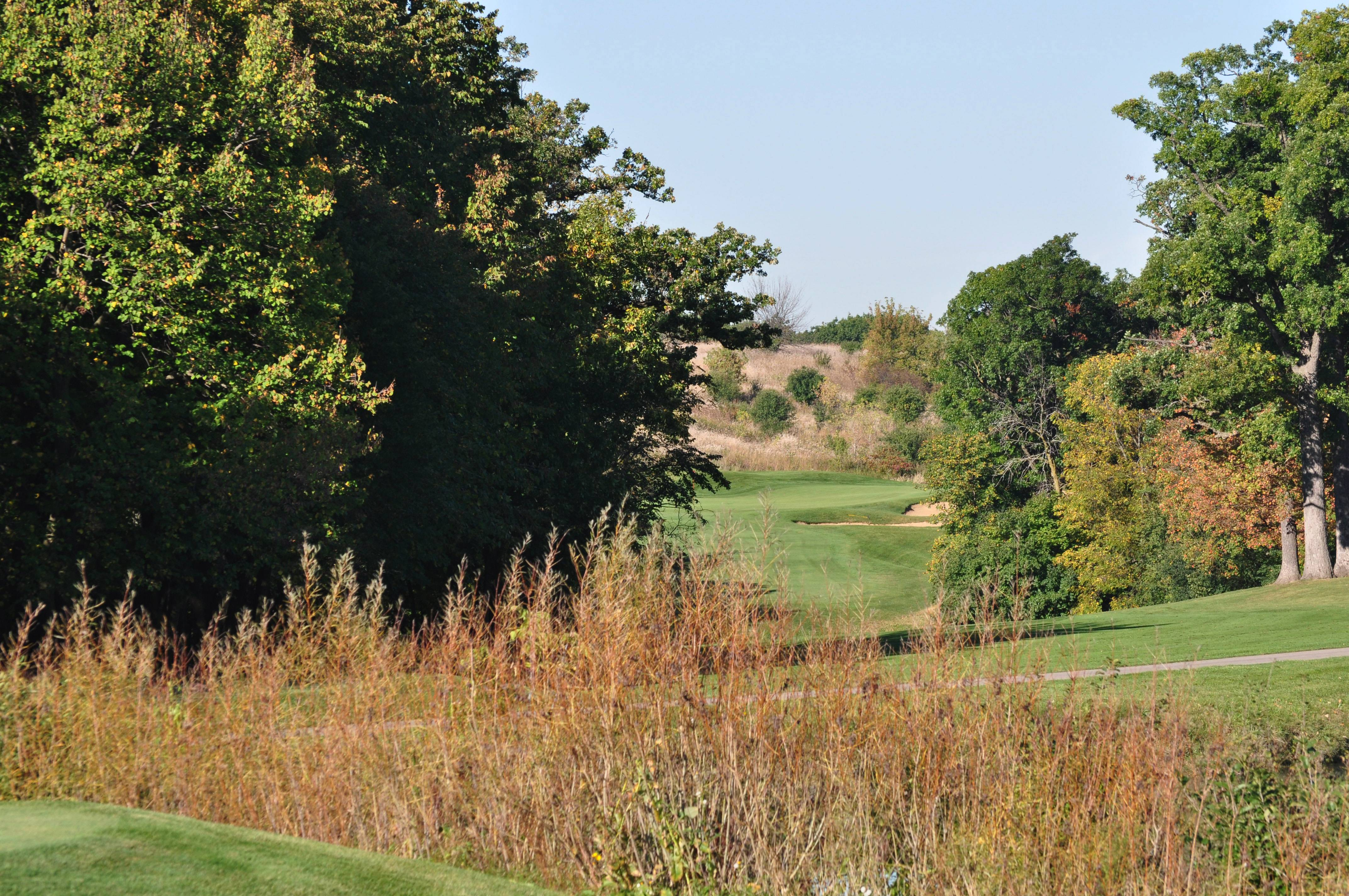 Improvements at Settlers Hill Golf Course will continue this year, and the No. 1 hole eventually will be moved to accommodate a driving range, according to the Kane County Forest Preserve District.
