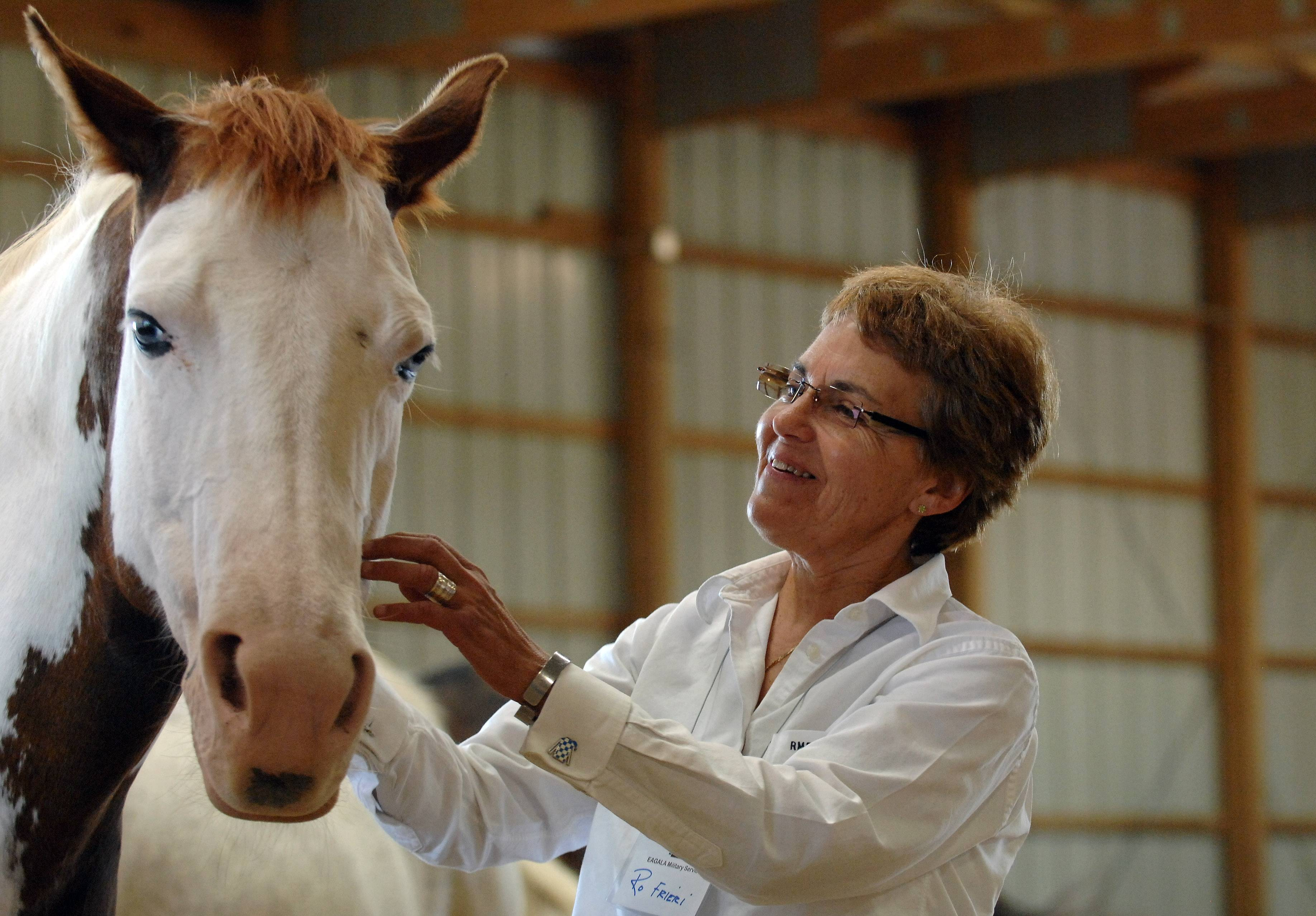 Rosanne Frieri, director of veterans services from Pittsfield, New York, gets to know one of the horses Monday at an equine-assisted therapy demonstration for veterans and military decision-makers at Reins of Change in Elgin.