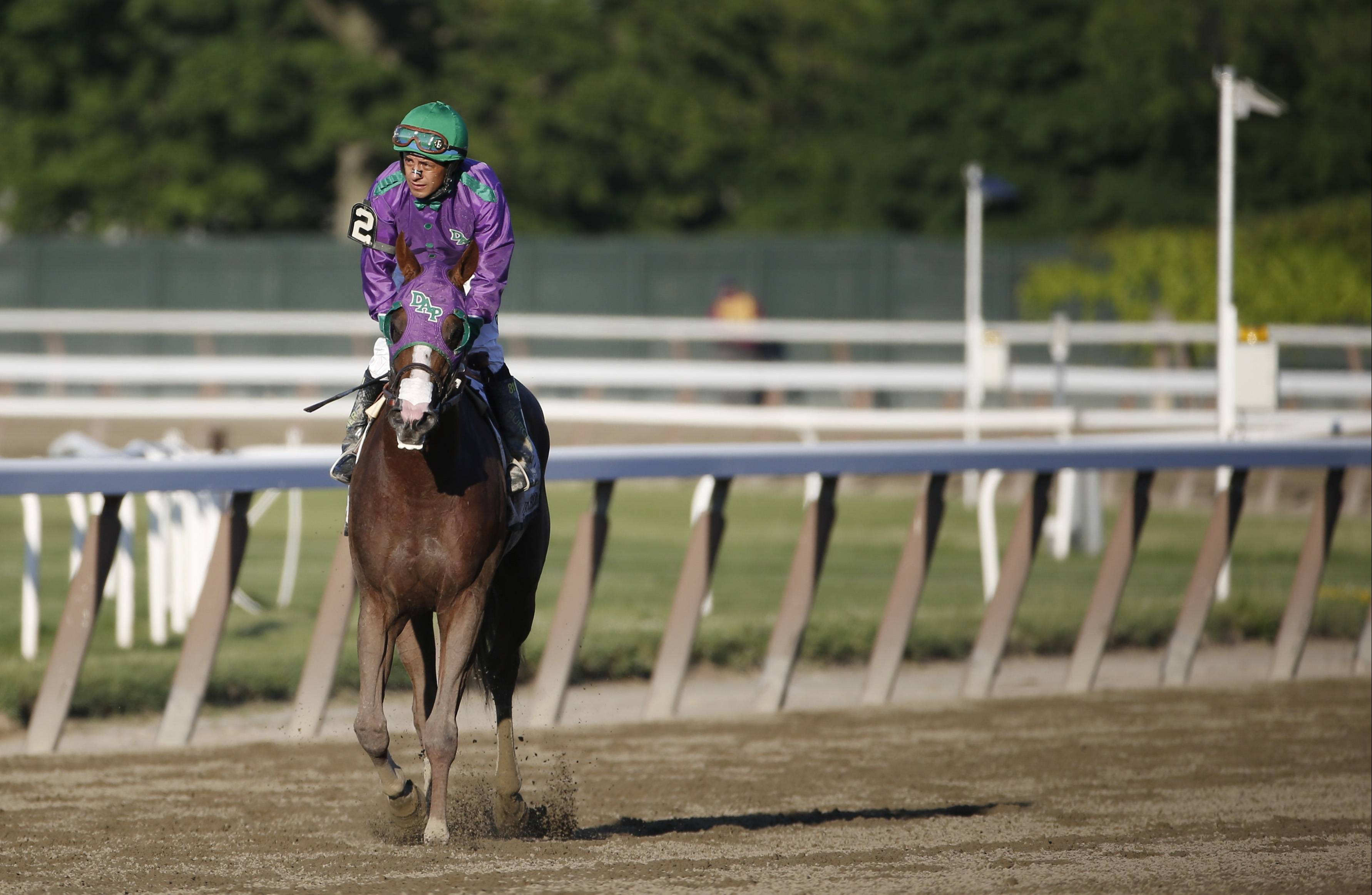 After finishing fourth in the Belmont Stakes, jockey Victor Espinoza cools down California Chrome. Mike North says there should be a match race in two months with California Chrome and Tonalist.
