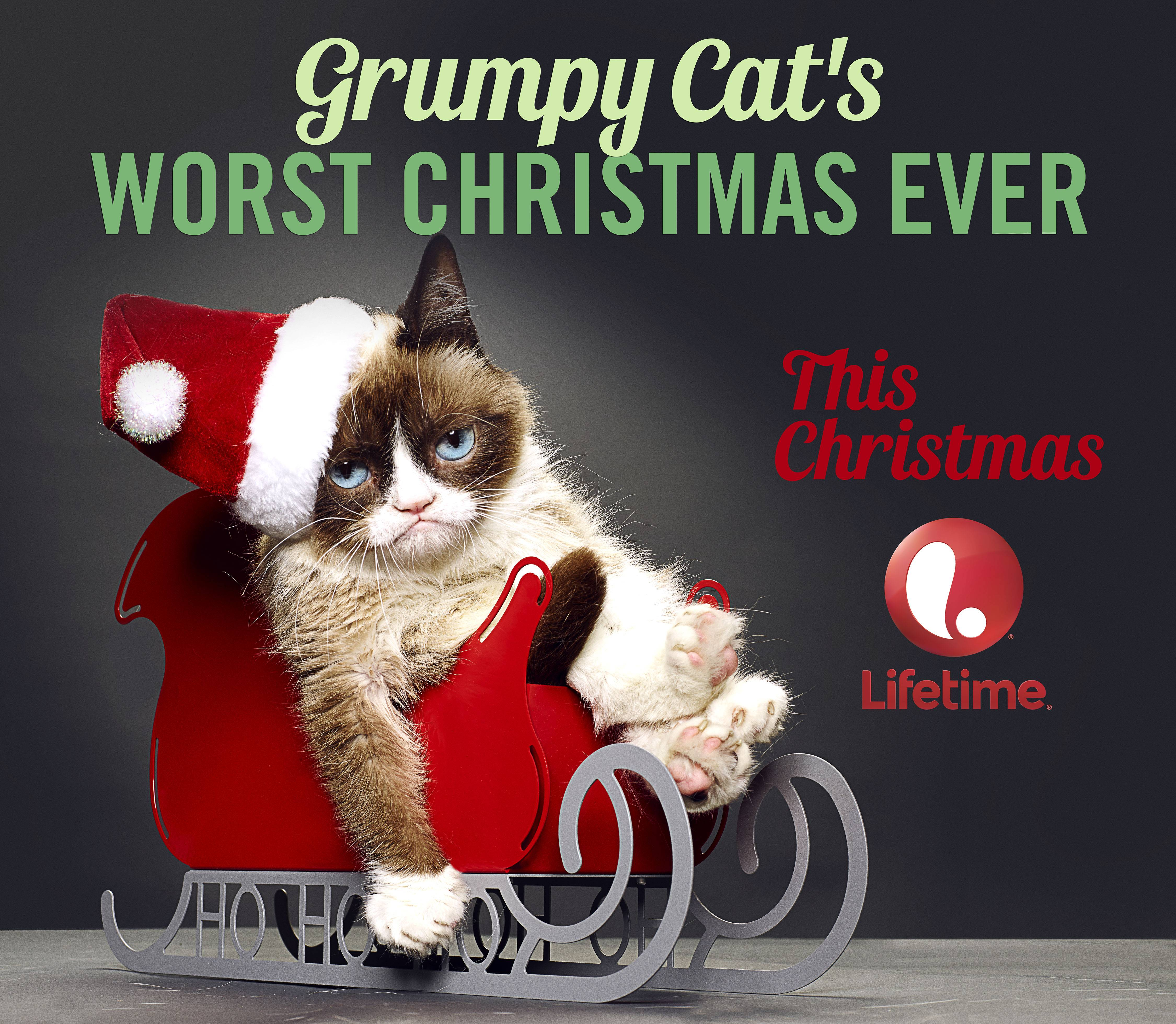 "A live-action film called ""Grumpy Cat's Worst Christmas Ever"" will film this summer and air on Lifetime this holiday season, according to The Hollywood Reporter."