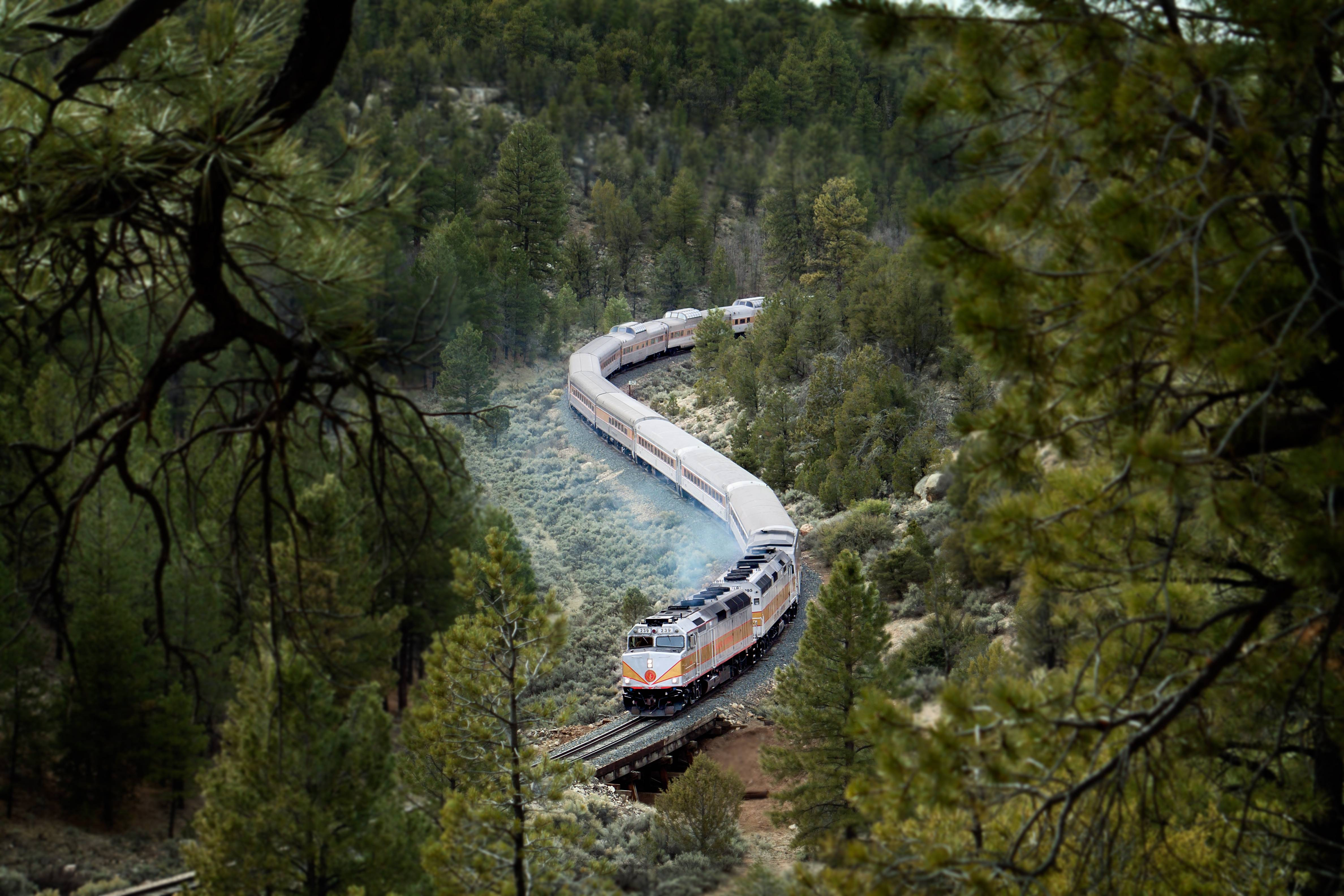 The Grand Canyon Railway, which runs between Williams, Arizona, and the Grand Canyon's South Rim, has been running since 1901, carries 225,000 people a year and offers history, sightseeing, scenery and entertainment.