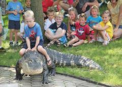 Cold Blooded Creatures presented by Jim Nesci allows children to touch, hold and ride these wild animals.Schaumburg Park District