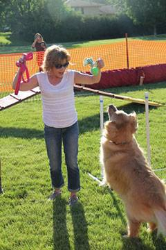A pup and owner have fun in the sun during Yappy Hour.Schaumburg Park District