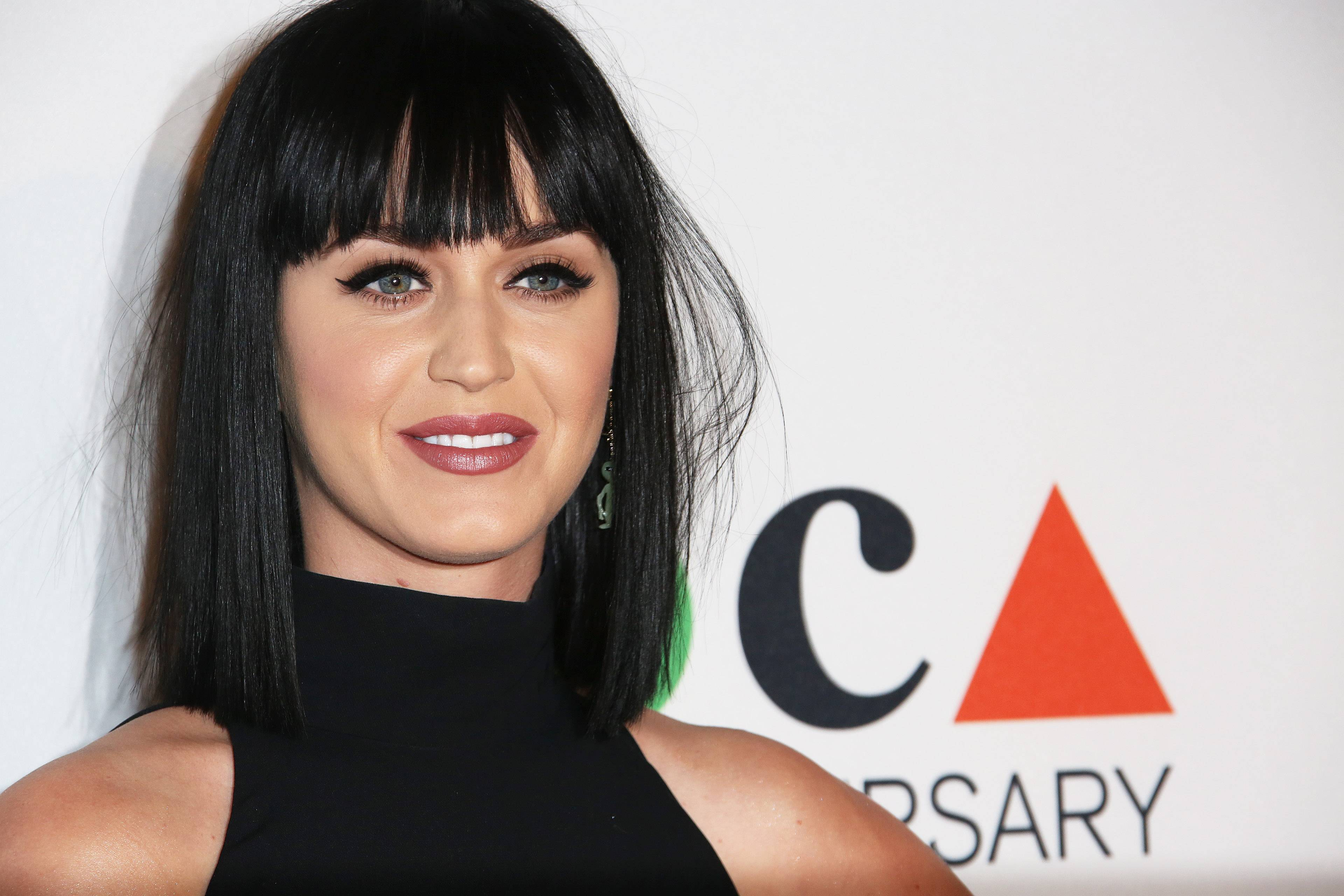 "Katy Perry helped present a $1 million donation Thursday from Staples Inc. to support teacher projects during the upcoming school year. She'll also invite fans at her concerts to join the ""Make Roar Happen"" initiative at DonorsChoose.org, where they can select projects to support and make donations as small as $1."