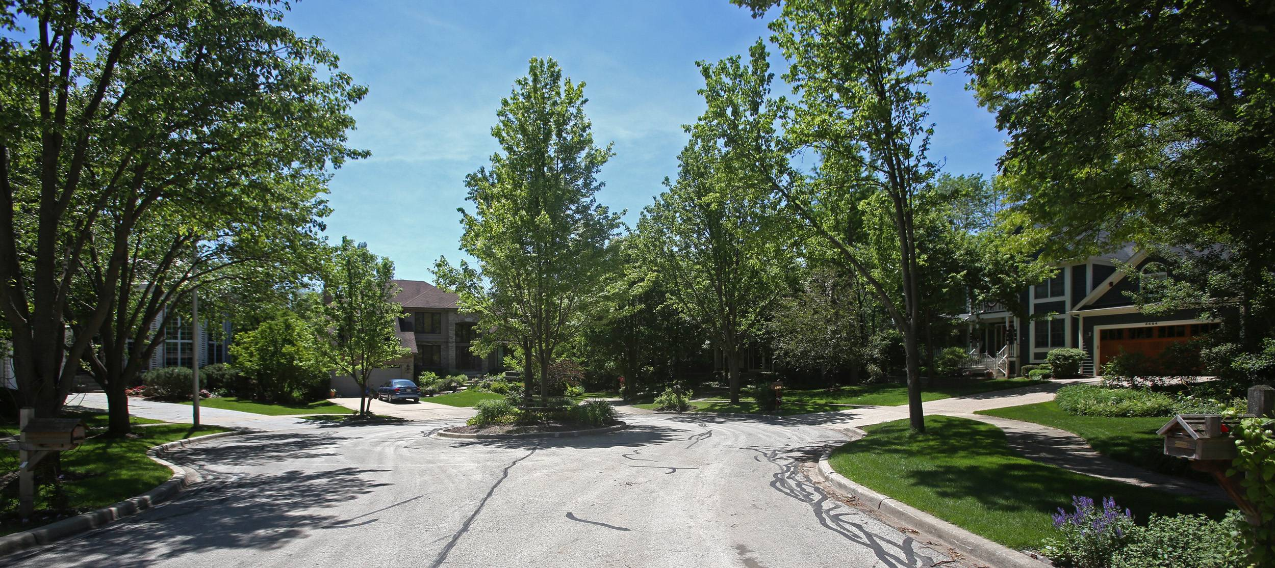 Bending Oaks in Downers Grove is full of mature trees and large lots that give the neighborhood a secluded atmosphere.
