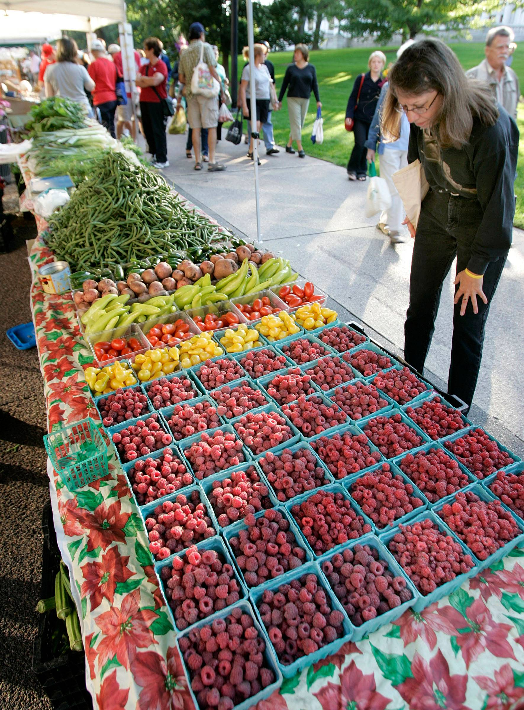 The Dane County Farmers Market in Madison, Wis., boasts about 160 vendors selling cheese, meat, cheese, bread, cheese, fruits and vegetables, cheese, and, well, cheese. But you don't need to spend anything to enjoy the market, which runs from April into November. There are plenty of samples to be had.