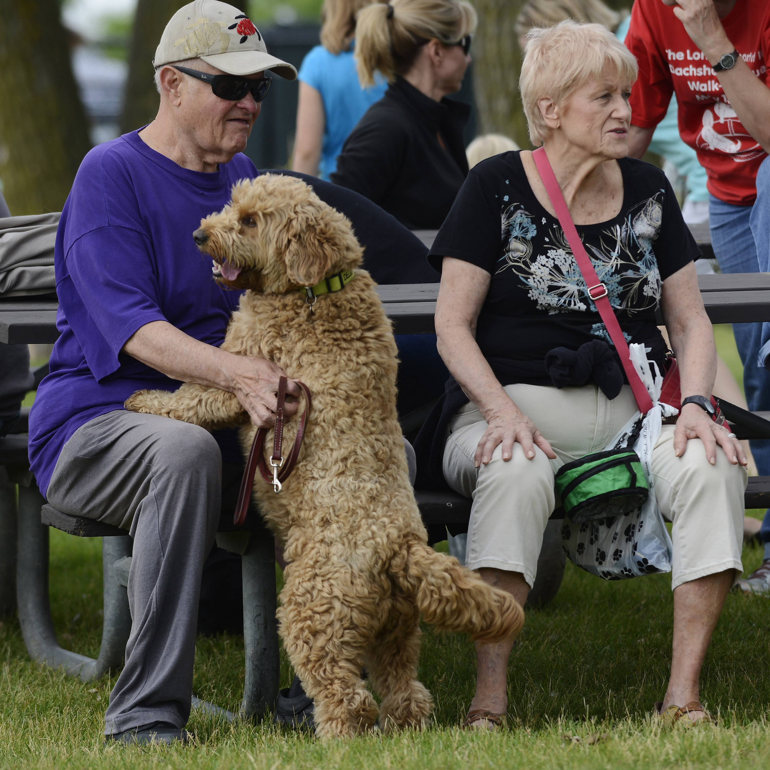 Bob and Pat Waldron of Arlington Heights and their dog, Delilah, a golden doodle, visit the Canine Commons dog park at Melas Park in Mount Prospect, which is a joint effort of the Arlington Heights and Mount Prospect park districts.