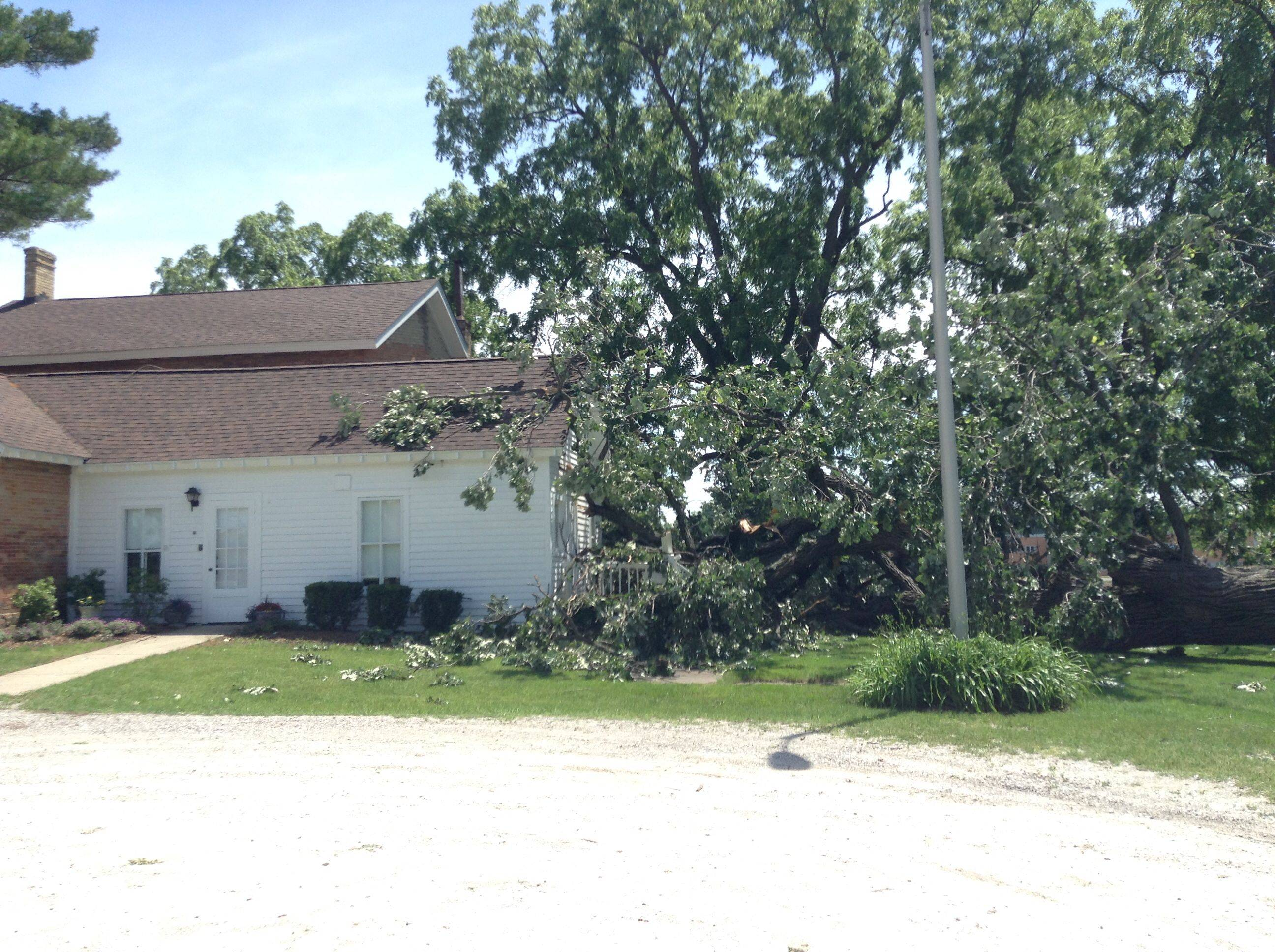 A large oak tree toppled by Saturday's storms landed on the porch of the Andrew C. Cook house, the first non-log cabin home built in Wauconda Township.