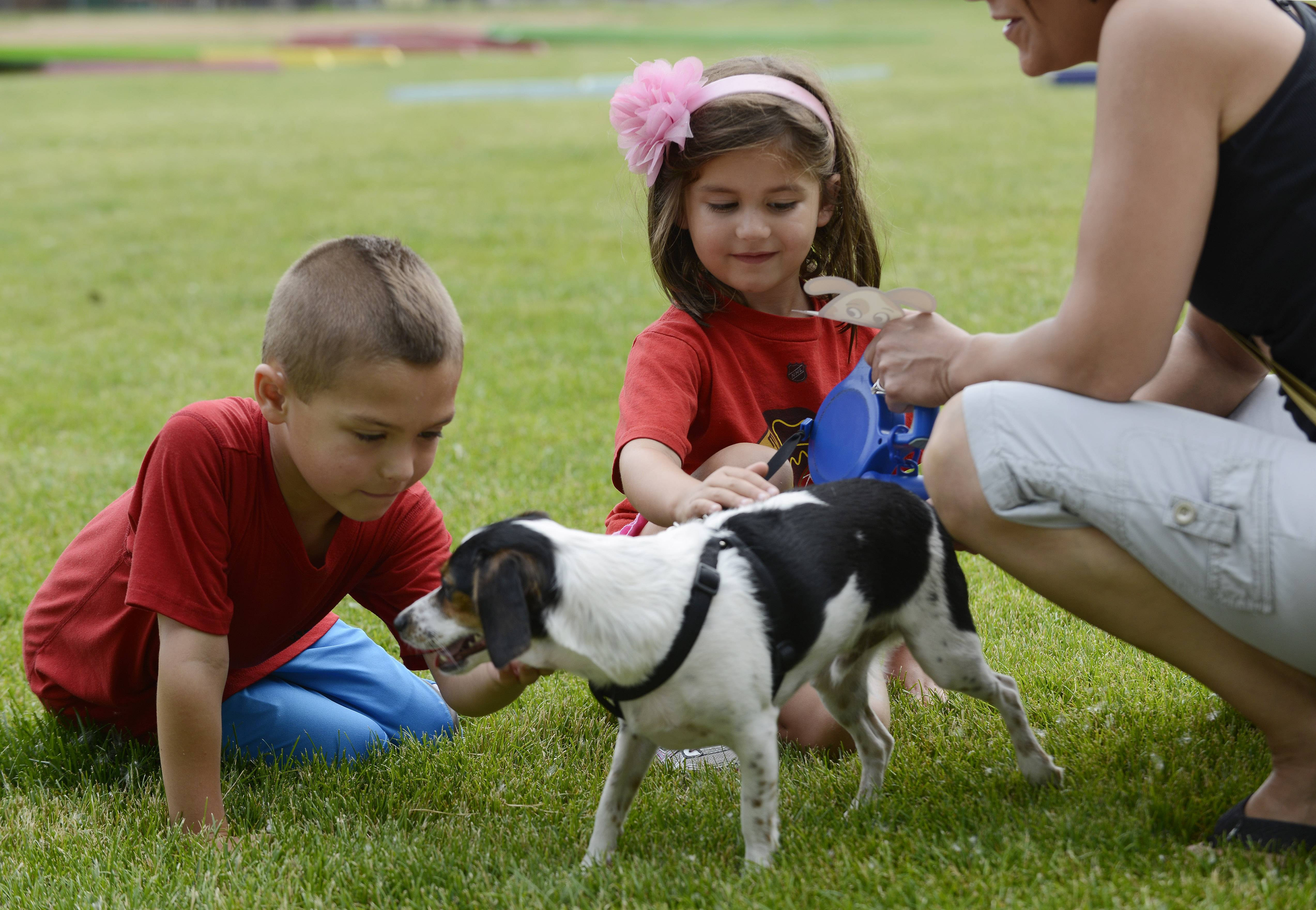 "Carter Thomas, 6, of Mount Prospect and his sister, Evie, 5, pet ""Louie,"" a beagle-fox terrier mix/rescue dog owned by Katie Shawke of Prospect Heights, during the all-pet pageant at the Prospect Heights Block Party at Lions Park Saturday."