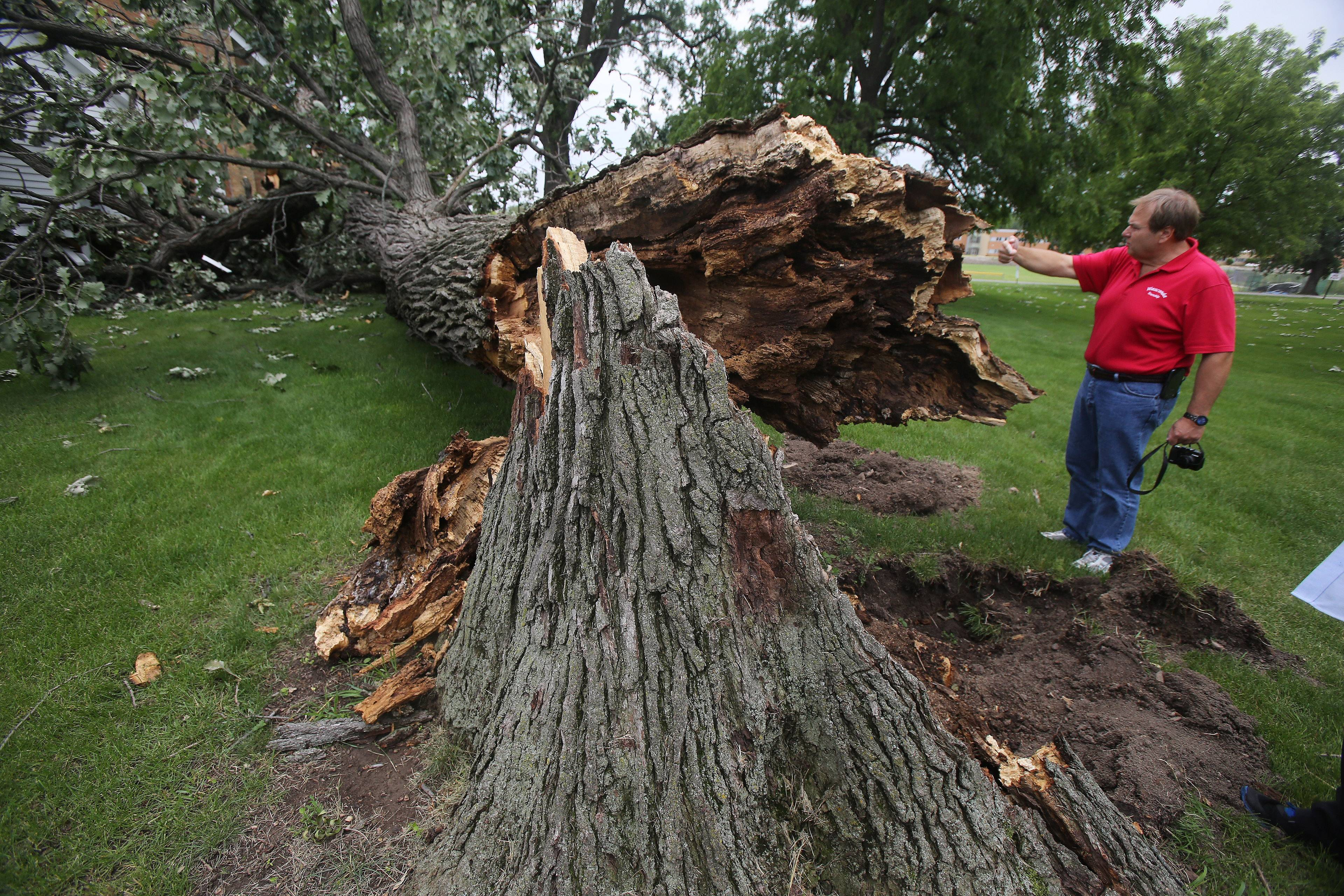 Wauconda Township Supervisor Glenn Swanson discusses the damage done by a tree that fell and hit the back porch of the historic Andrew C. Cook House in Wauconda during a storm Saturday. Officials said the tree was about 200 years old.