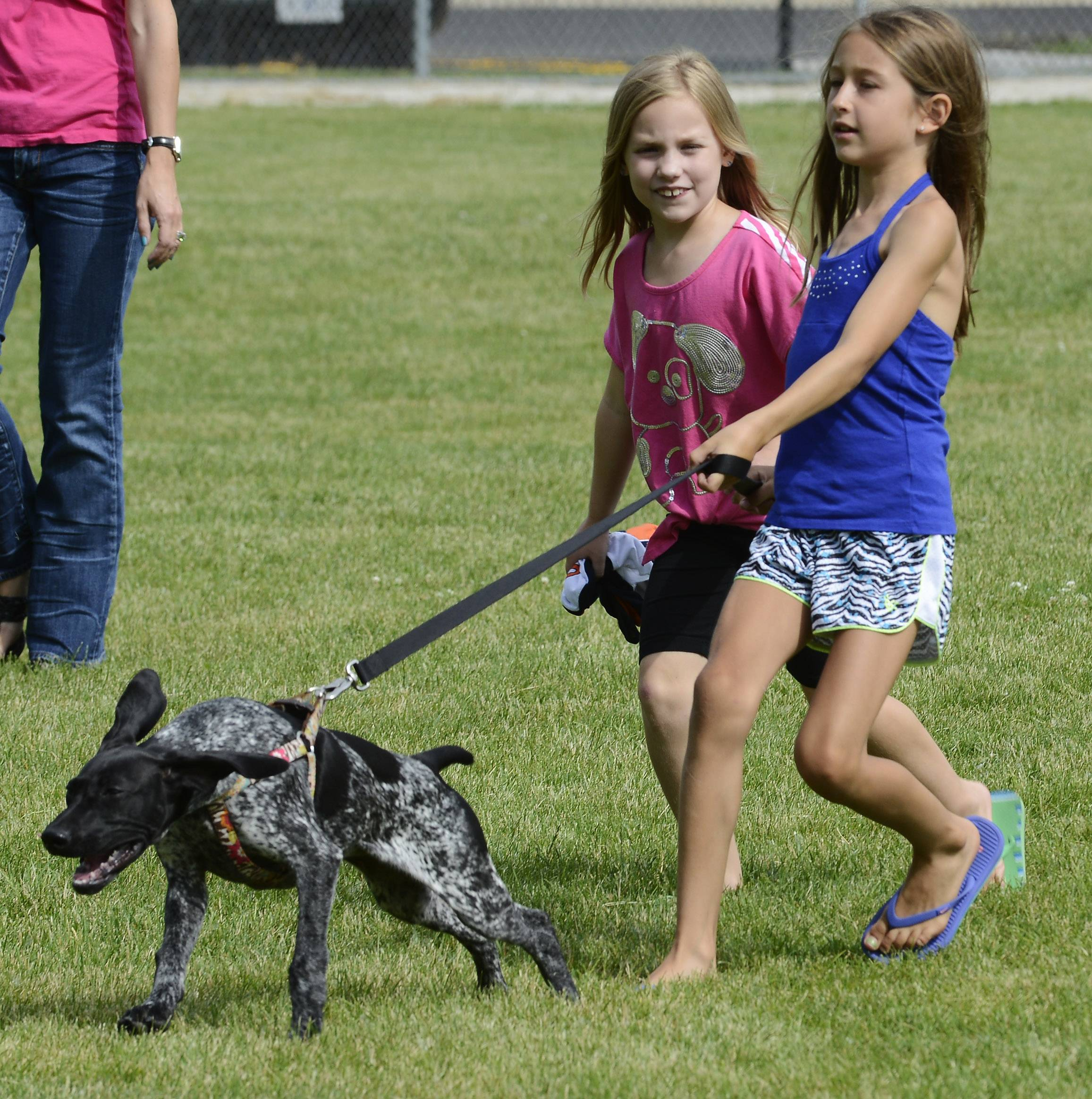 Ahsley Rycraft, 8, left, of Wheeling and her friend Erin Delariva, 8, of Prospect Heights hurry to register Erin's dog C.J., a German short-haired pointer, in the all-pet pageant at the Prospect Heights Block Party at Lions Park Saturday.