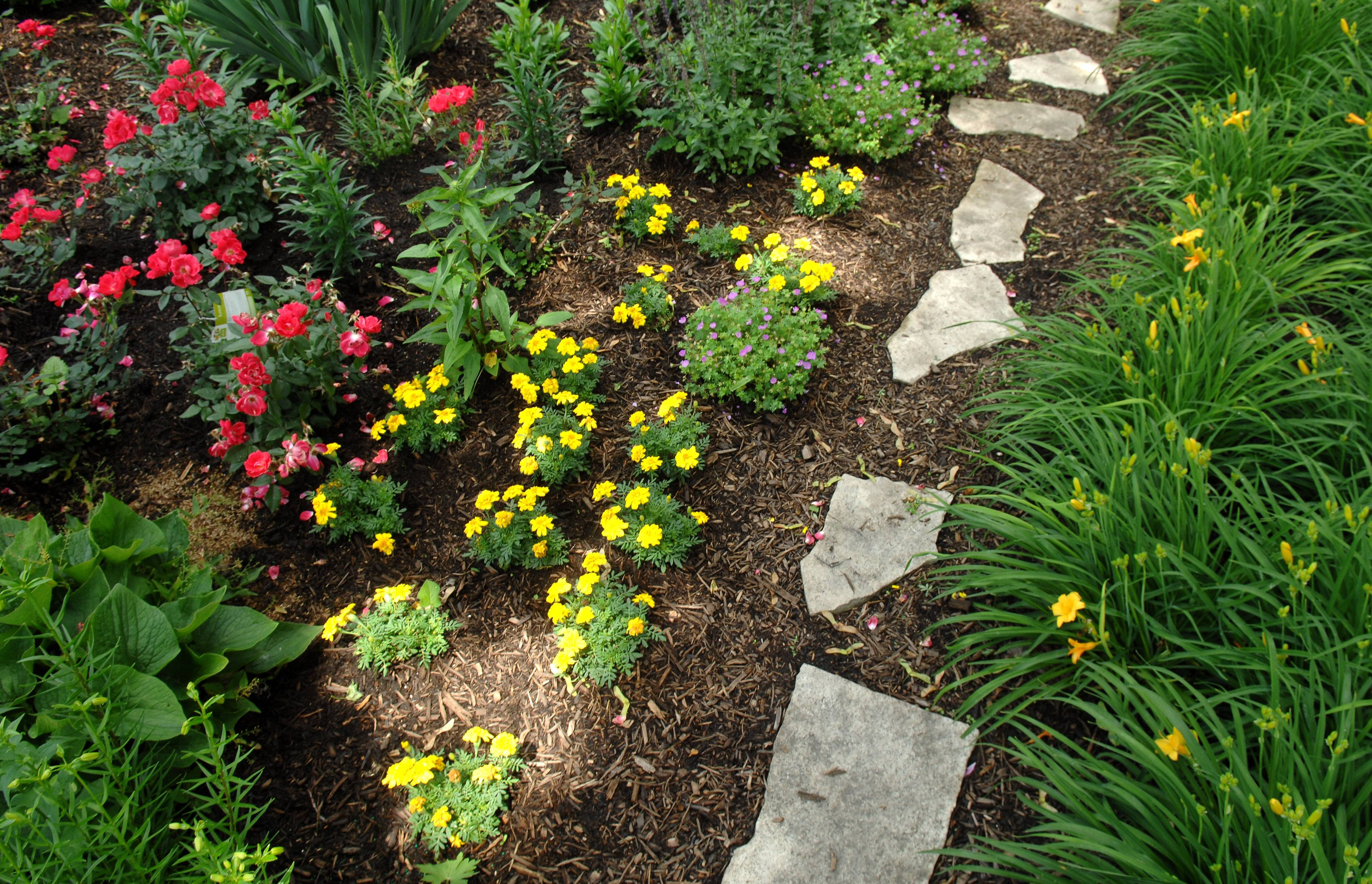 Murna Hansemann's Elgin garden will be featured in the Fox Valley Garden Walk.