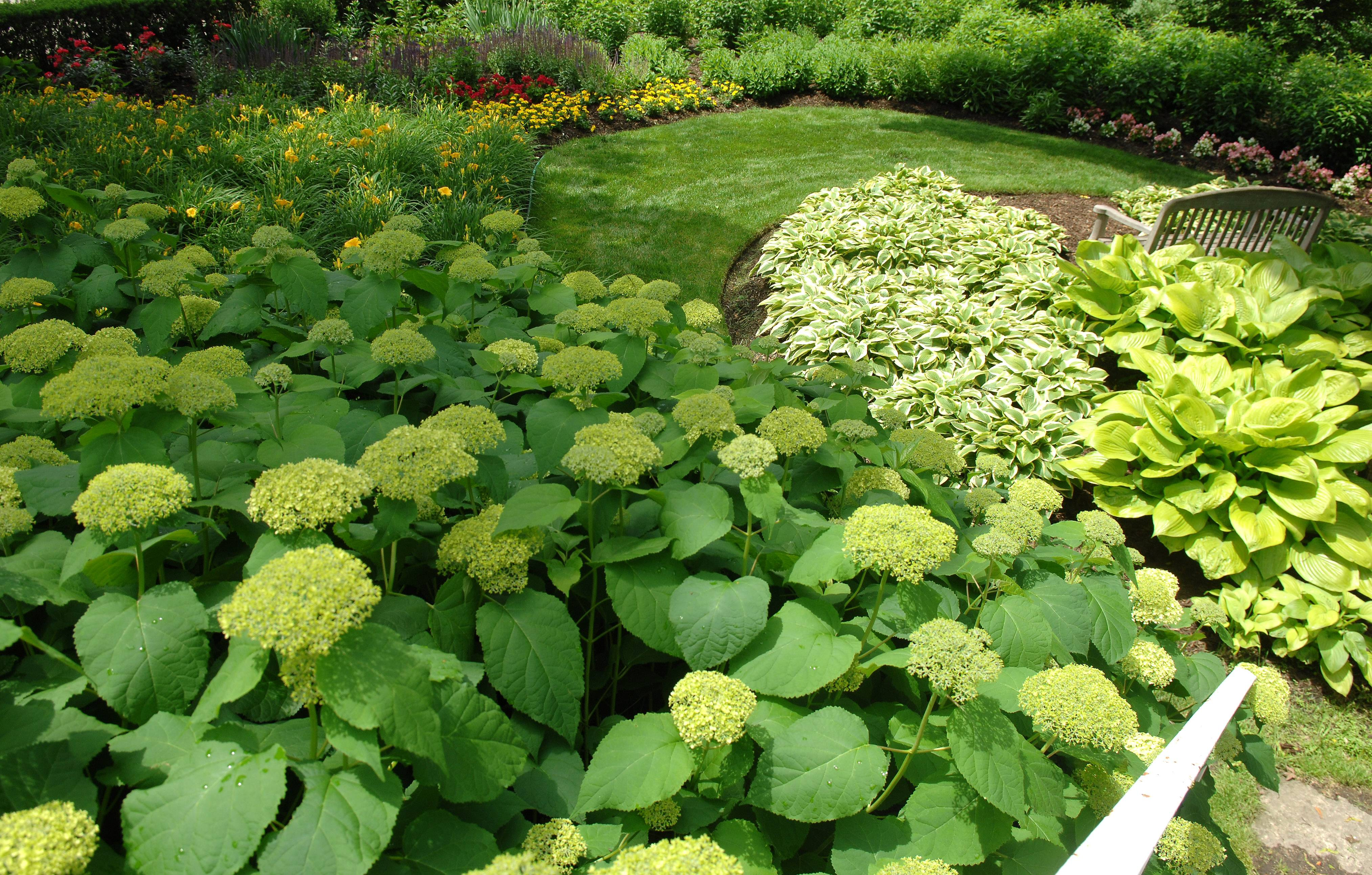 Murna Hansemann's garden is one of six to be showcased in the Fox Valley Garden Walk.
