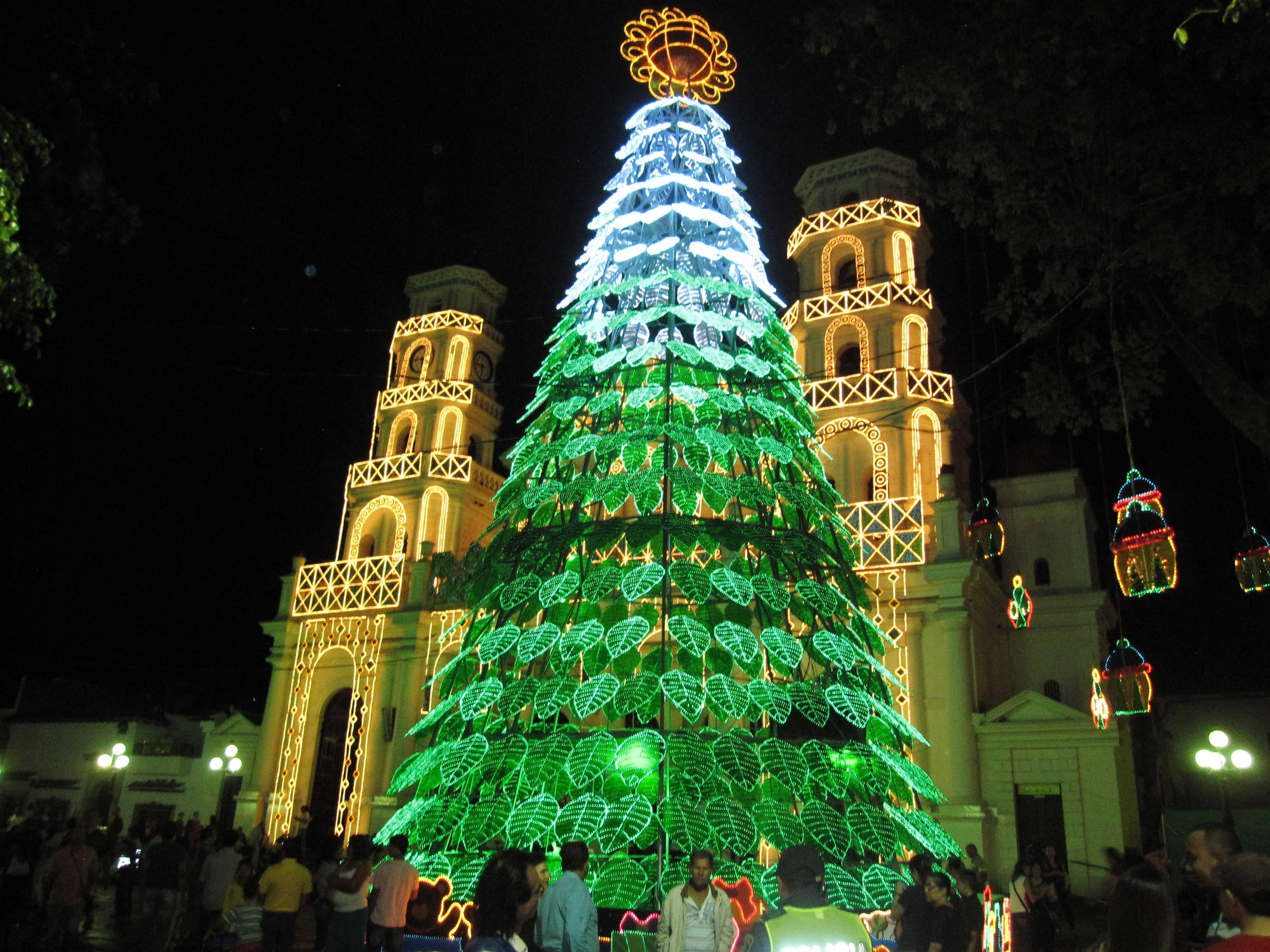 Beth Harpaz and her family saw the holiday lights in Medellin, Colombia, with a private guide who drove them around the city. Private tours are no longer the exclusive domain of wealthy travelers as websites make it easy for tourists and local guides to connect.