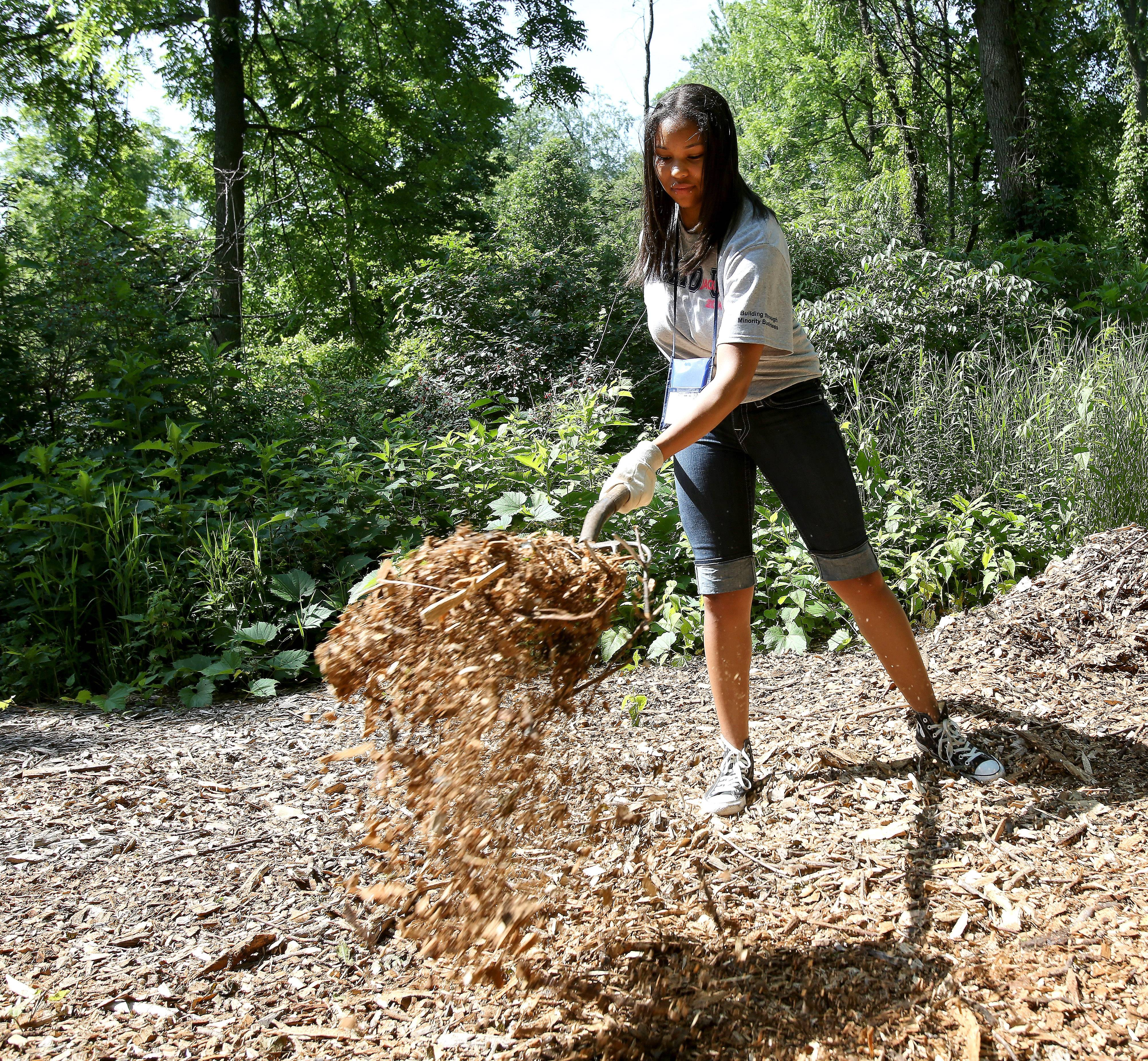 Nia Adams of Detroit helped mulch trails throughout Wheaton's Lincoln Marsh Friday as part of the Jack and Jill of America, Inc. teen leadership conference service day.