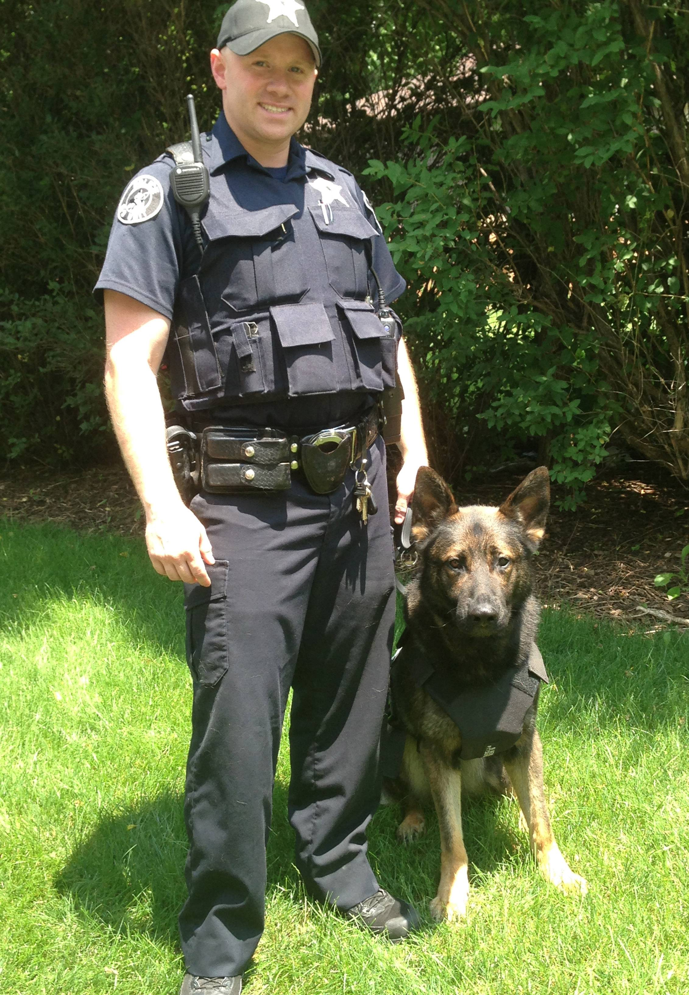 South Elgin's Rio, a German shepherd, received a ballistic vest donated through a partnership between Groupon and Vested Interest in K9s, Inc. Rio's handler is South Elgin Police Officer Bryan Kmieciak.