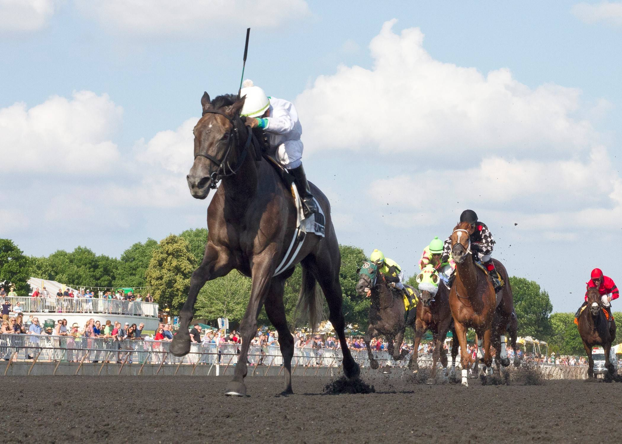 "Courtesy of Four Footed Fotos""She's trained great coming up to it,"" said My Option's trainer Chris Block. ""She and Eddie (jockey Perez) get along really well. At the three-eighths pole, I was confident. I know her and I know Eddie's posture when he's got a lot of horse. He found a nice spot and the rest was history."""