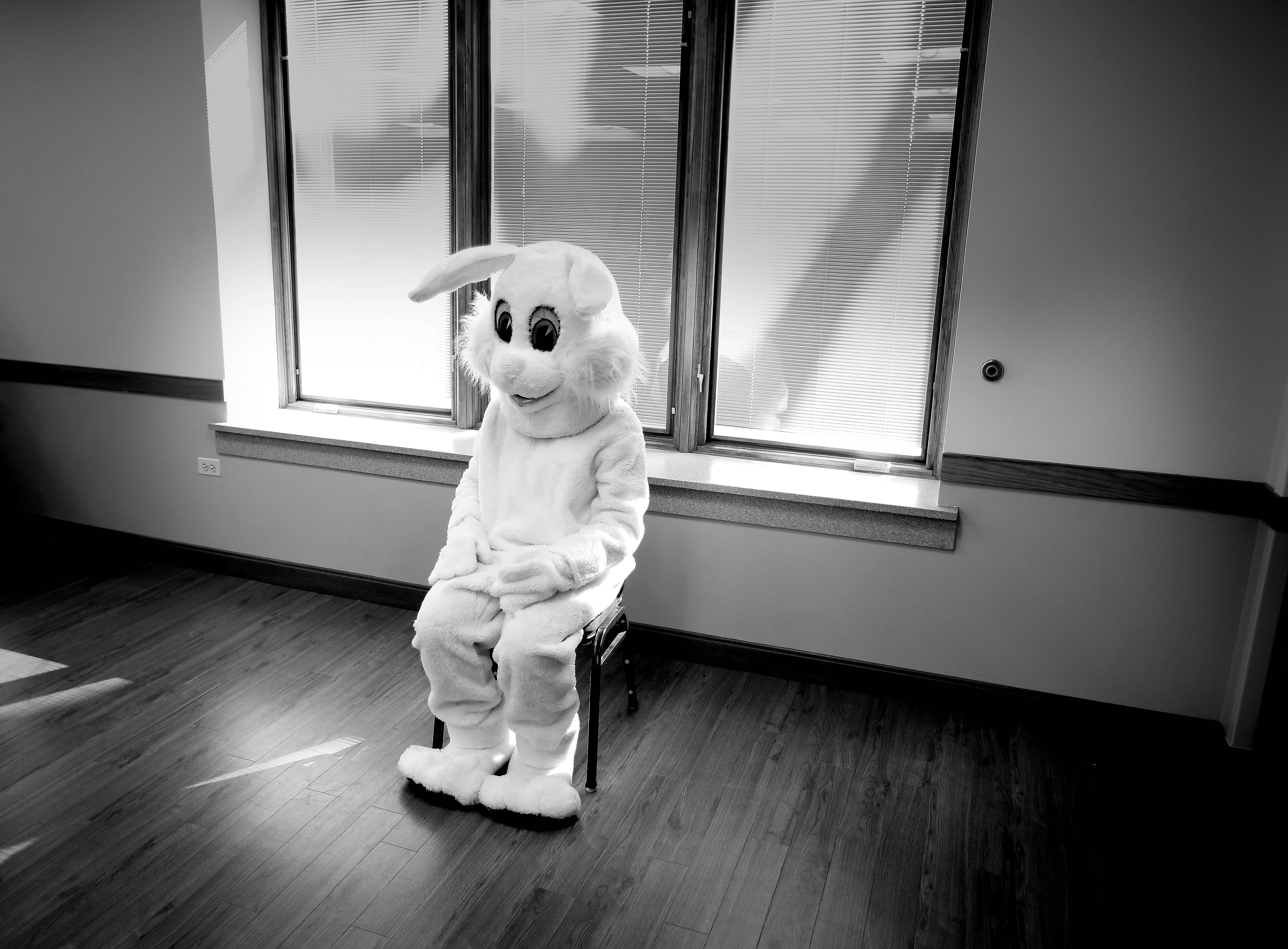 Sometimes mascot, clowns, mimes, and other costumed characters sort of make me feel uneasy. I don't know why that it is, but I almost always feel compelled to photograph them at the same time. Here is a lone bunny waiting for kids during the Cary Park District's annual Breakfast with the Bunny at the Community Center in Cary this past Easter. How do you feel about mascots and clowns? This photo was published in the Perspective column in the print edition of the Daily Herald.