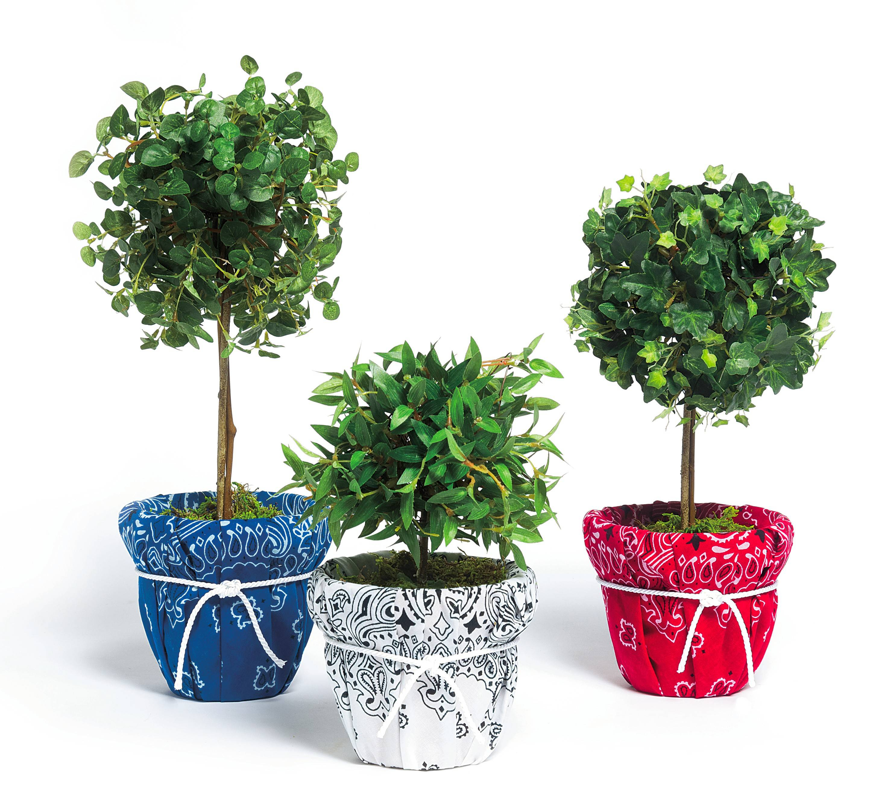 Use colorful bandannas to fashion boy-howdy bases for topiaries.