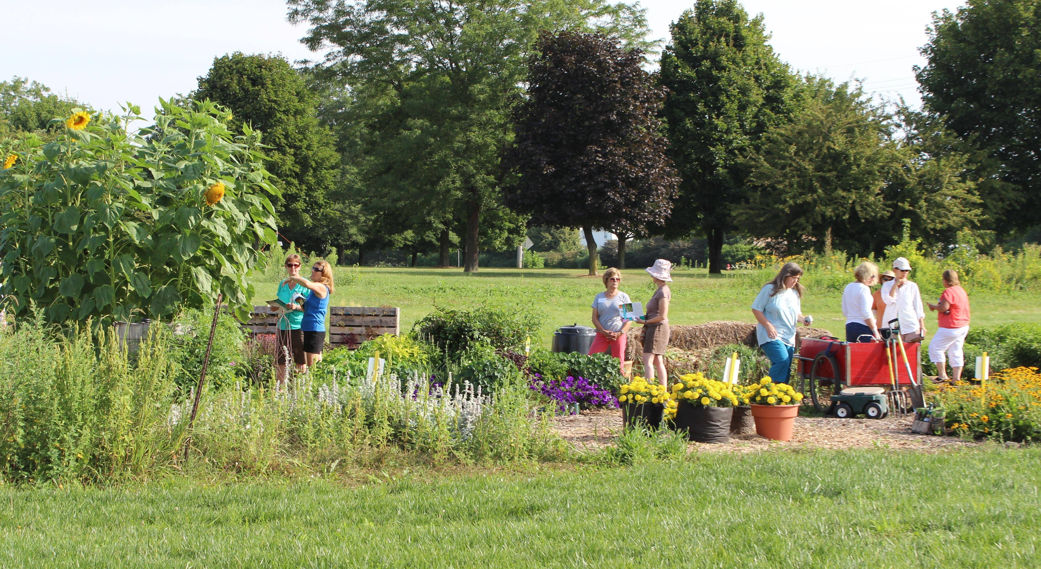 University of Illinois Extension Master Gardeners of Kane County will host an open house for the 2014 Idea Garden from 9 to 11 a.m. Tuesday, July 8. Visit eight fun, yet functional, gardens, all of which can be easily replicated at home.