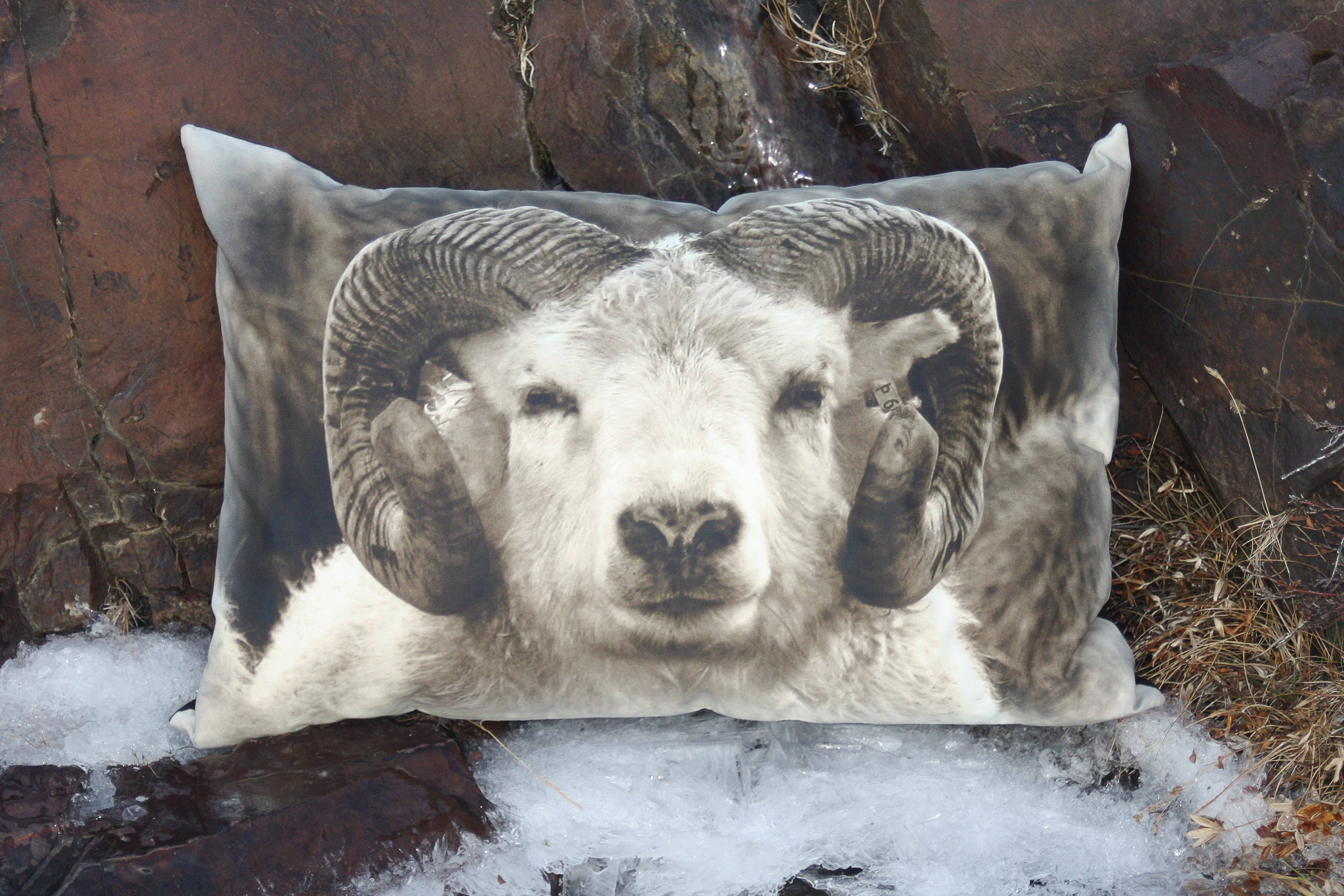 Icelandic horses, rams, reindeer and other natural icons of the landscape are brought to life by Lagdur in visually powerful photoprinted pillows.