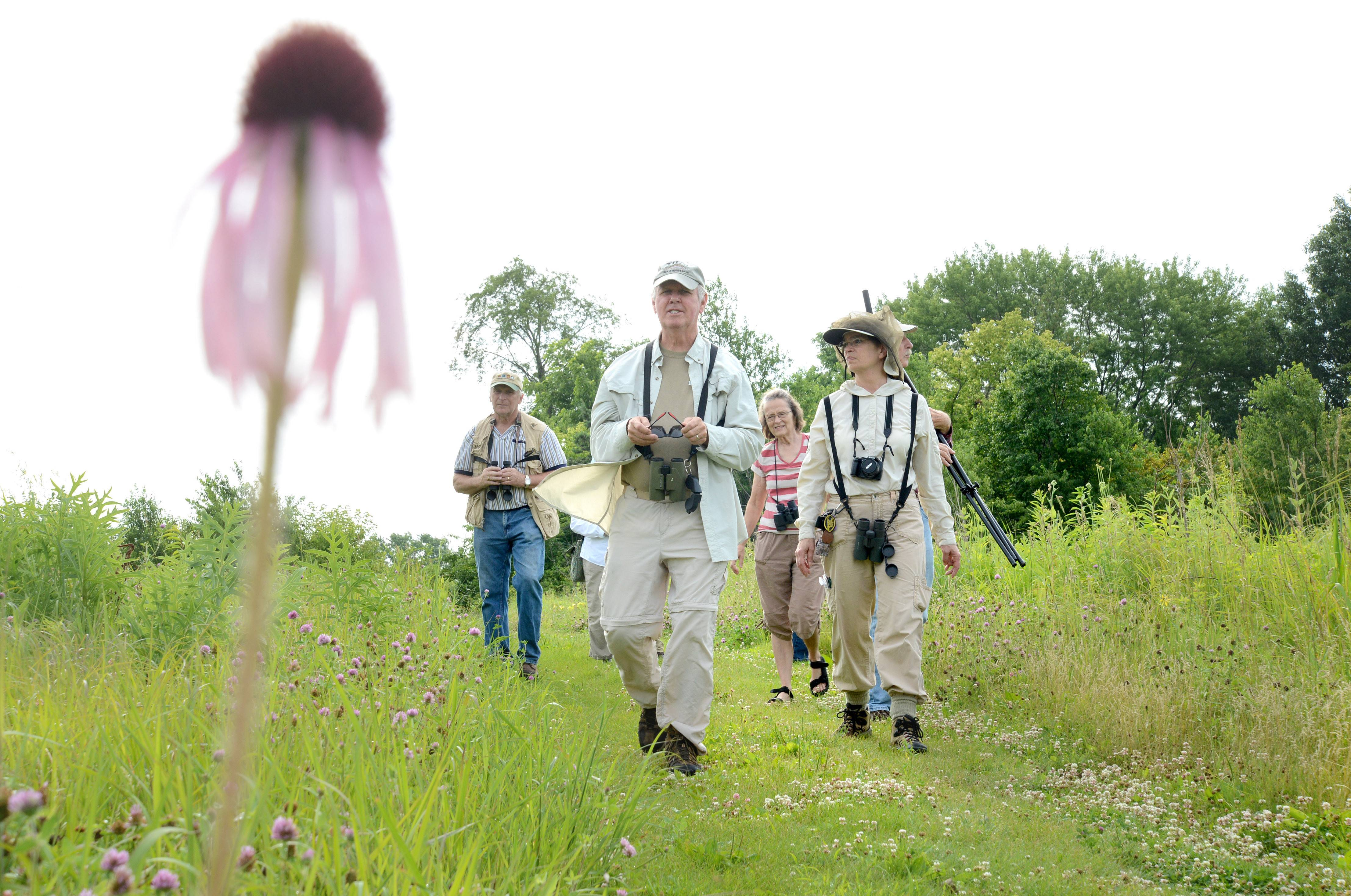 Kane County Audubon Society President Bob Andrini of St. Charles, left, and Terry Murray of Aurora lead a group bird watchers at Dick Young Forest Preserve in Batavia on Saturday. Nine birders braved the mosquitoes to hike around the lake on the pleasant summer morning.