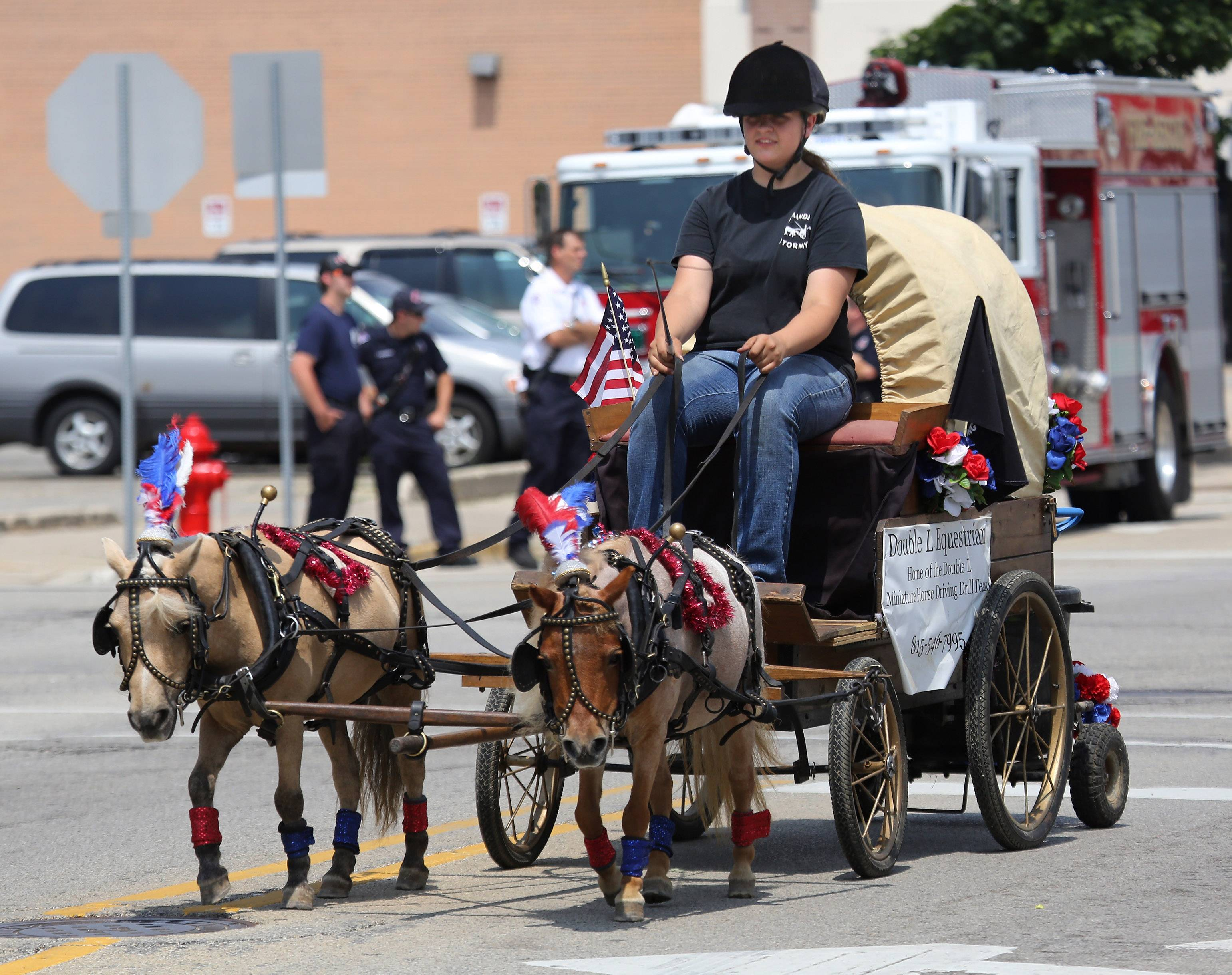 Amanda Wutz of Richmond rides a wagon Sunday with the Double L Equestrian Miniature Horse Driving Drill Team during the Mundelein Community Days Parade.