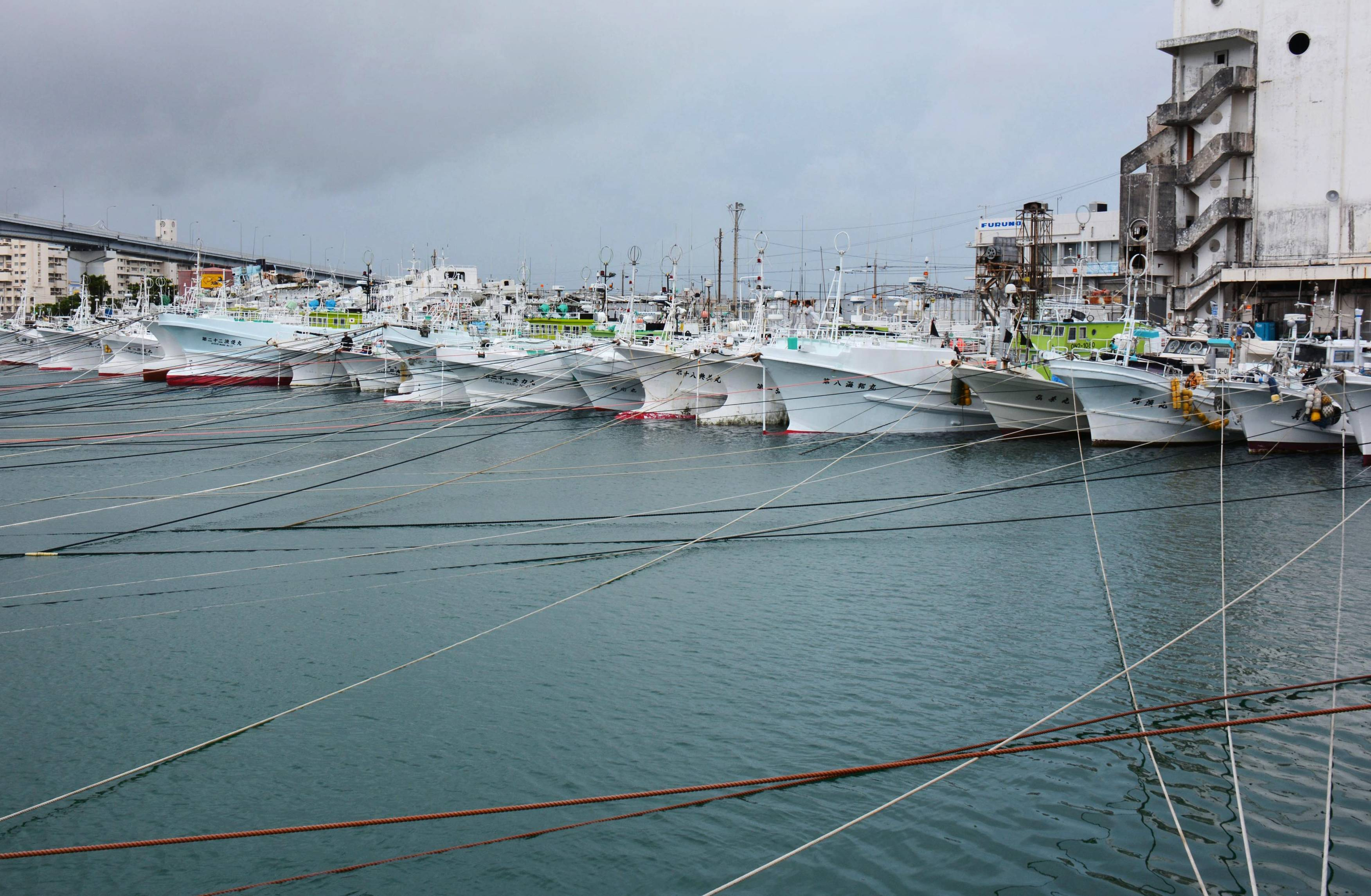 Fishing boats are tied with ropes at Tomari fishing port in Naha, southern Japan islands of Okinawa, Monday. Japan has issued warnings over a powerful typhoon churning toward the southern islands of Okinawa. The Japan Meteorological Agency says the storm could be one of the strongest to hit Japan in decades.