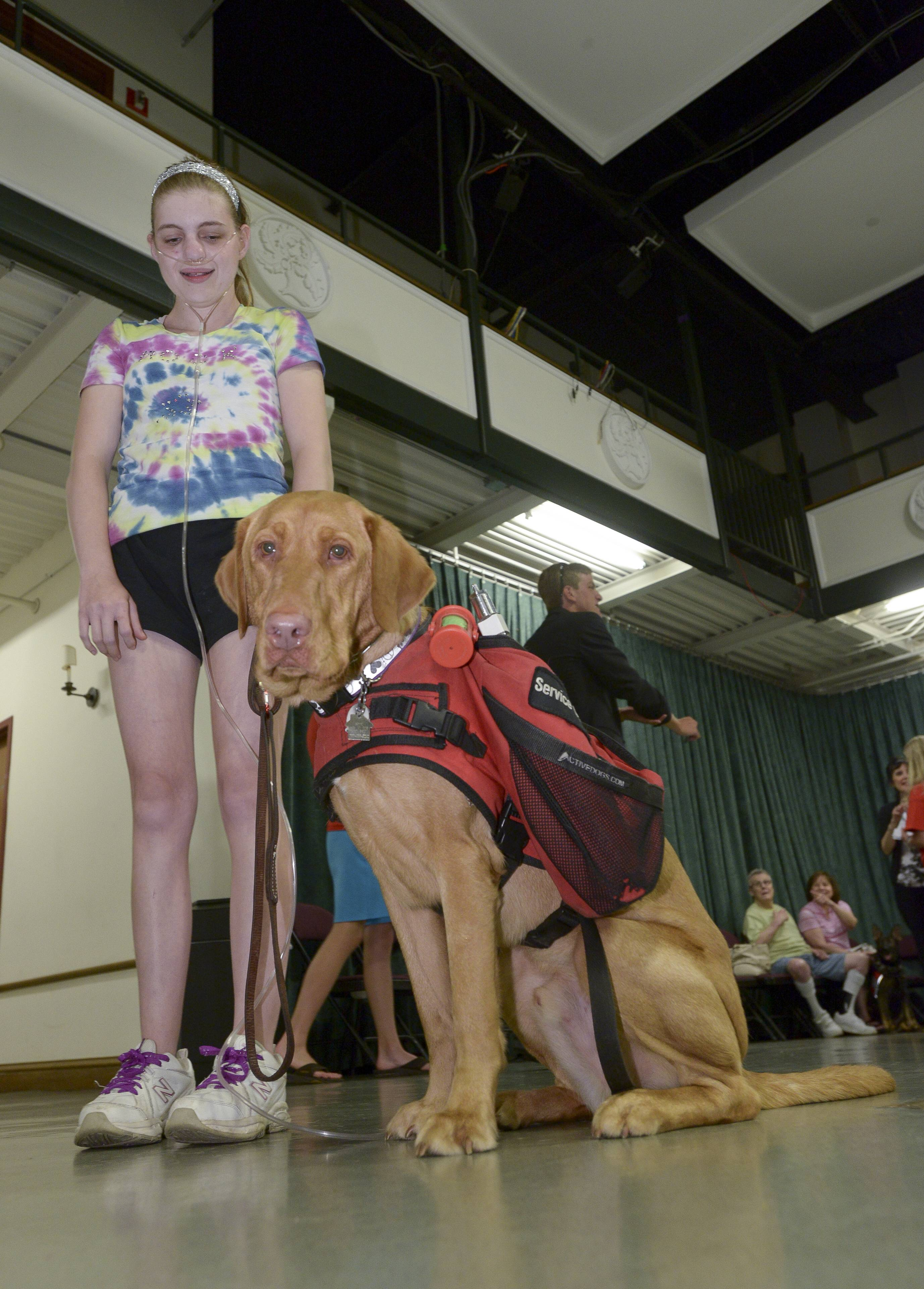 "Jenny Youngwith of Carol Stream and her service dog ""Bode"" participate in a service dog class from the MidAmerica Service Dogs' Foundation training class in Hinsdale."