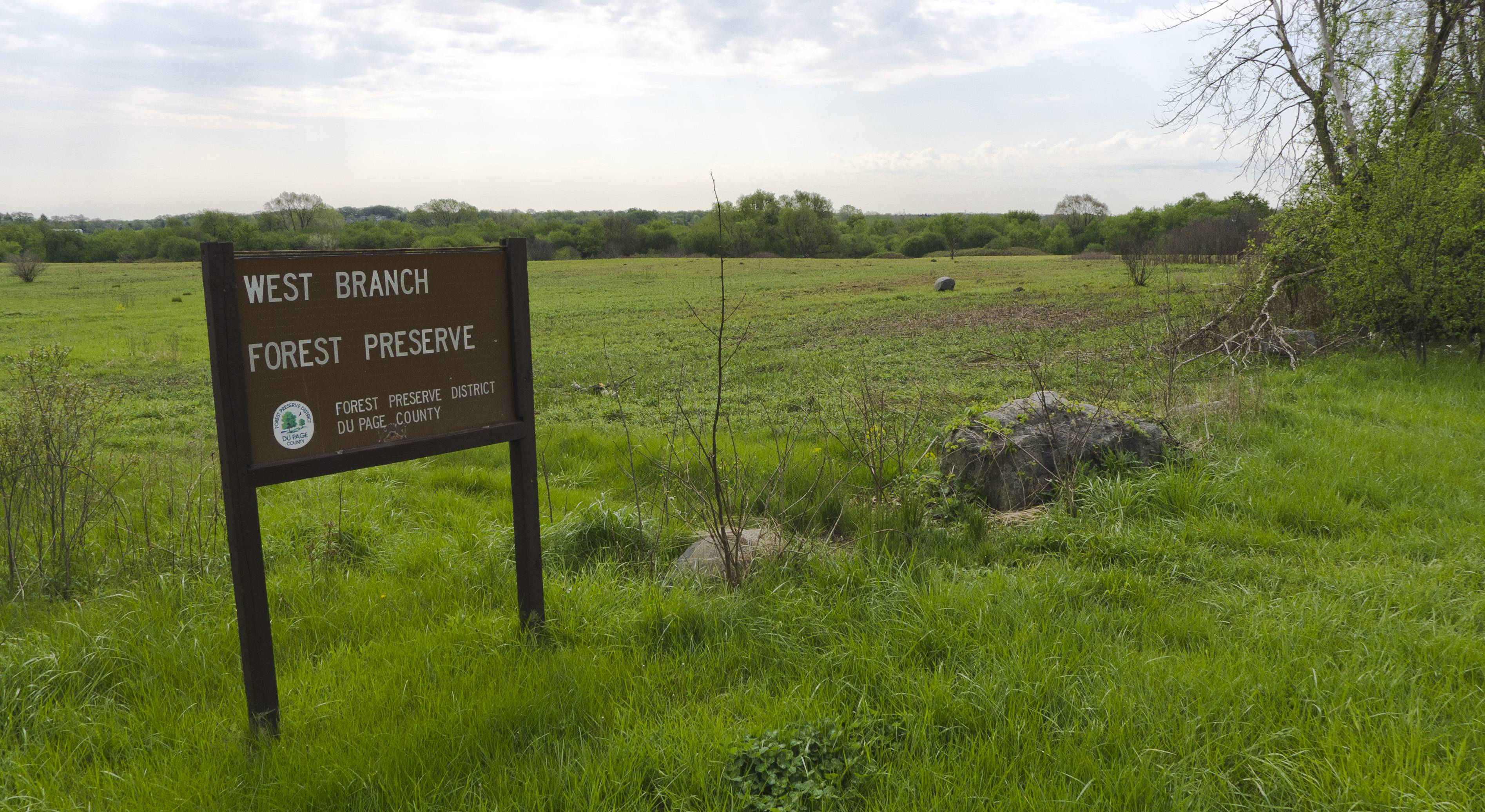 Most people who responded to a recent survey for the DuPage County Forest Preserve District consider preserving and protecting natural areas to be a top priority.