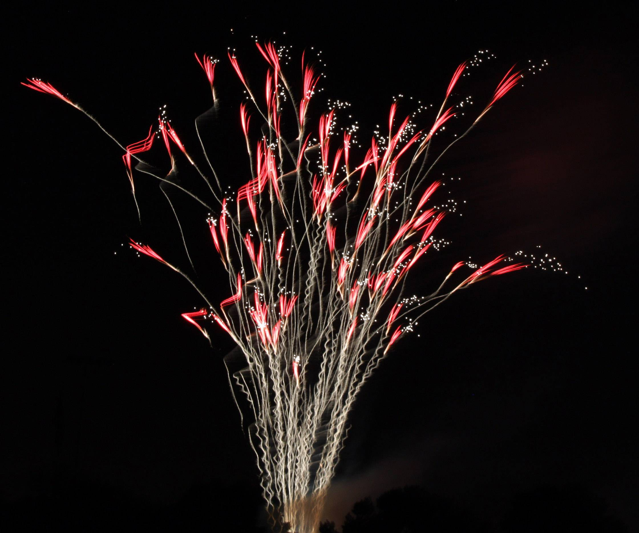 The fantastic fireworks show in Libertyville on the Fourth of July made for an unusual display of light and color creating one scene that looked like a bouquet of flowers with pollen blowing off.