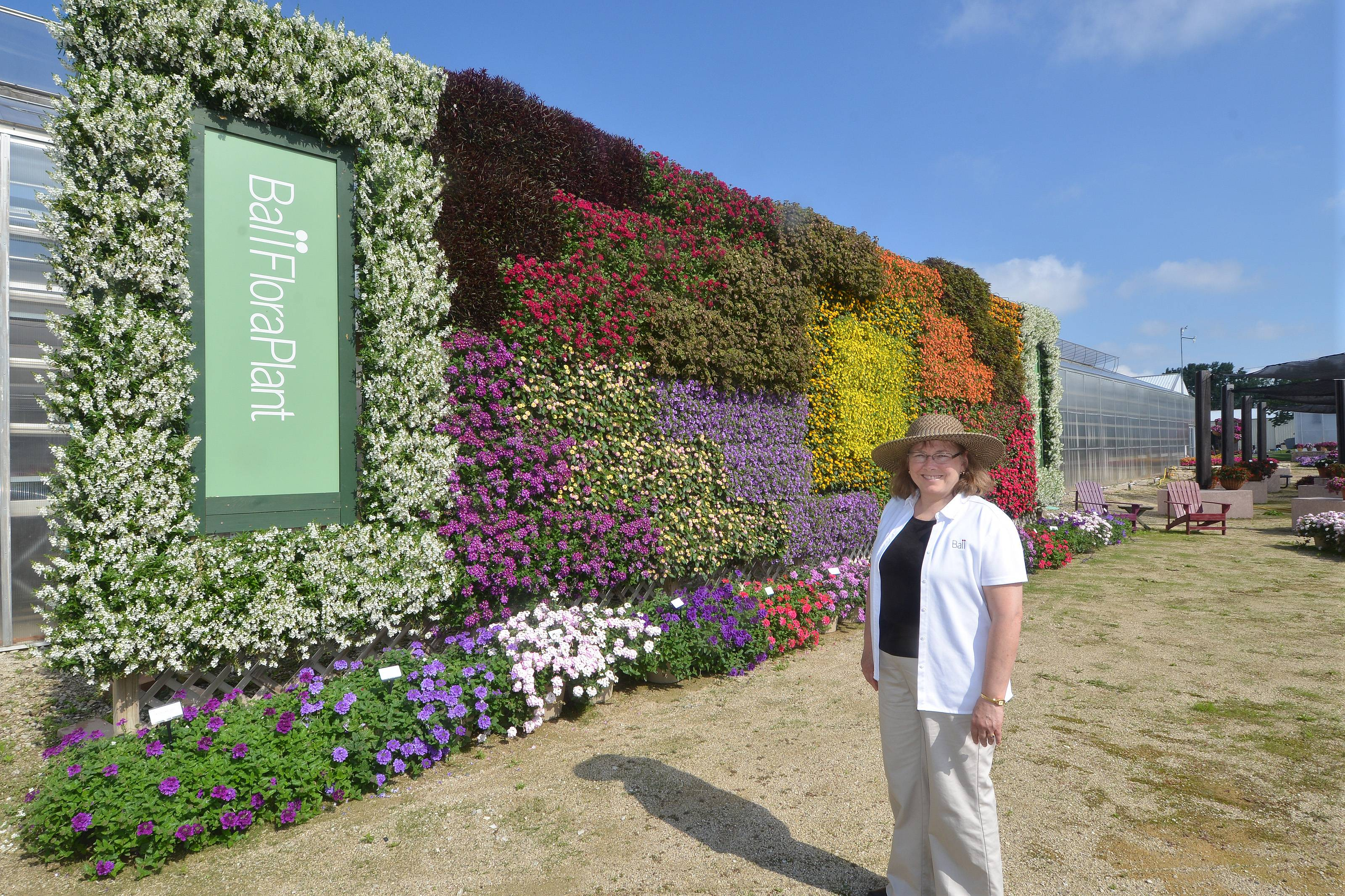 Susan Schmitz, education and trials manager at Ball Horticultural Company, shows off the vertical wall of plants in the Ball FloraPlant & Selecta Container Showcase, which highlights cutting-grown plants, including EnduraScape Verbena, Conga and MiniFamous Calibrachoas and Bounce and Big Bounce Interspecific impatiens.