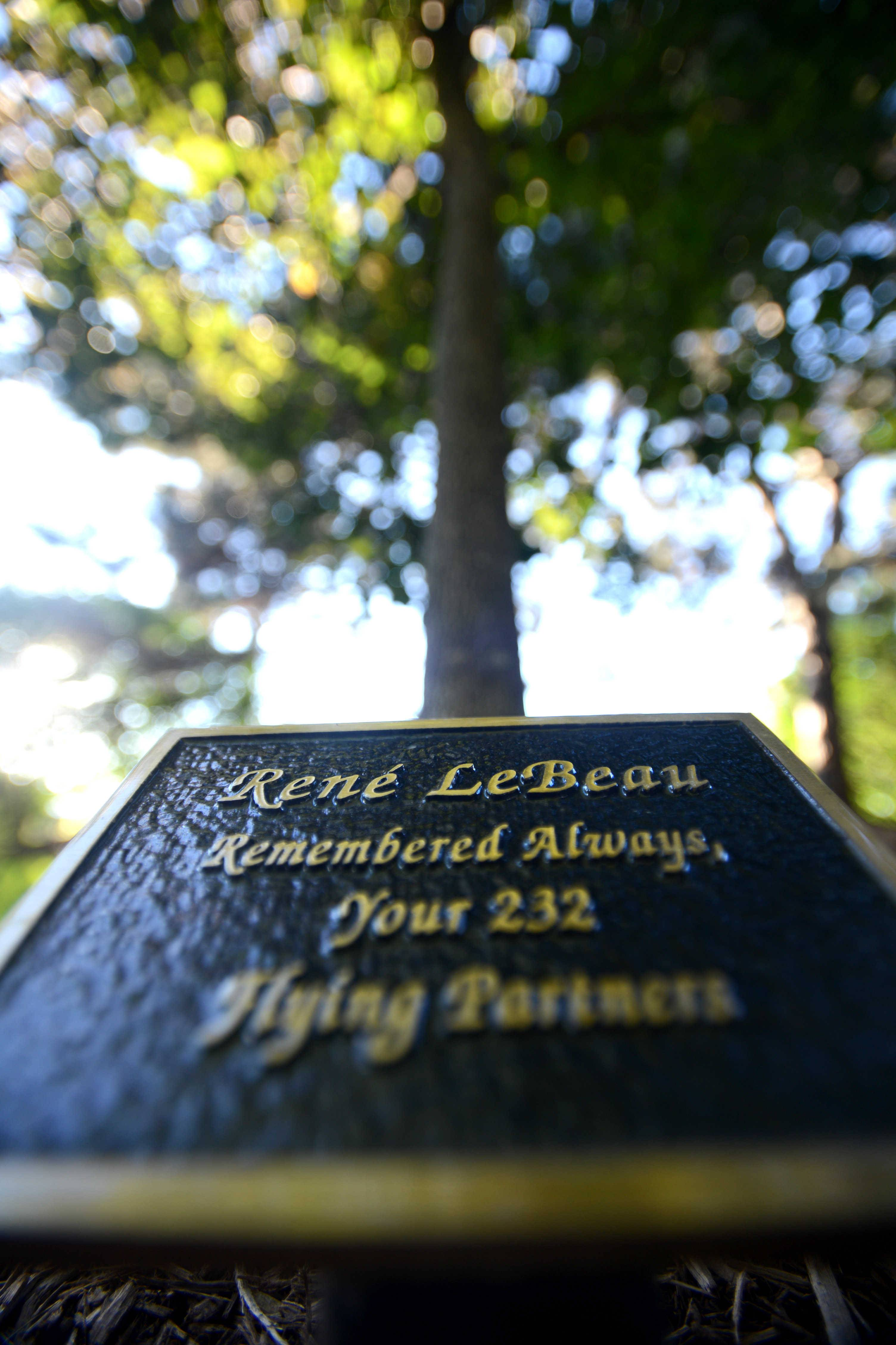 Two plaques and a bench mark a memorial to Flight 232 flight attendant Rene LeBeau near the Robert O. Atcher Municipal Center in Schaumburg. LeBeau, a Schaumburg resident,  perished when a DC-10 crashed in Iowa on July 19, 1989.
