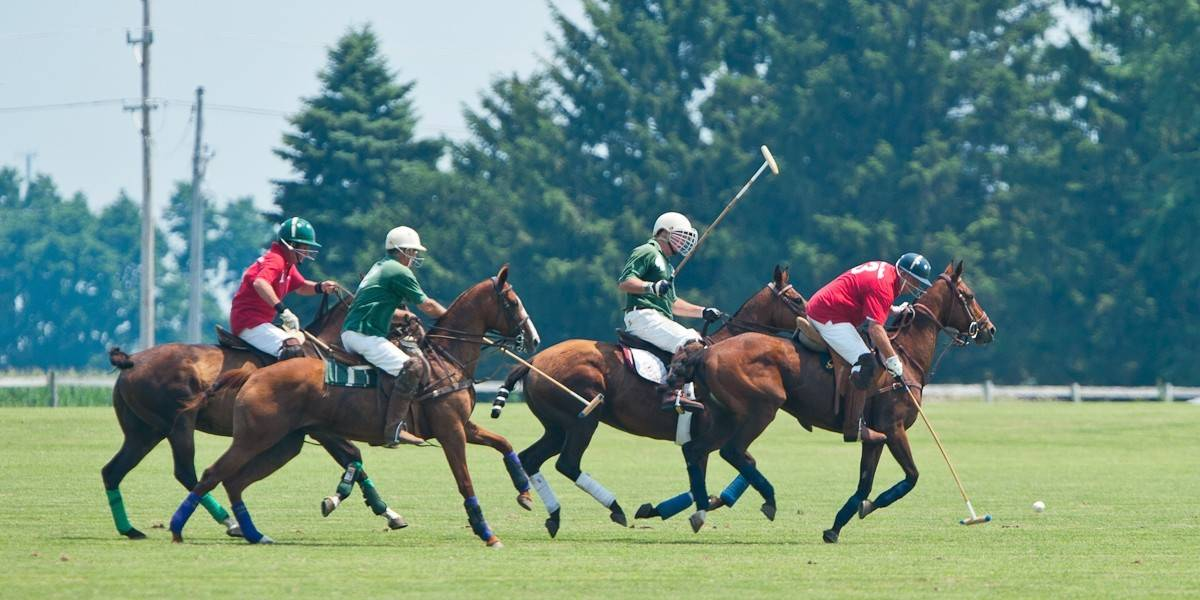 A Seniors Polo Tournament will take place Sunday, July 20, in Batavia.