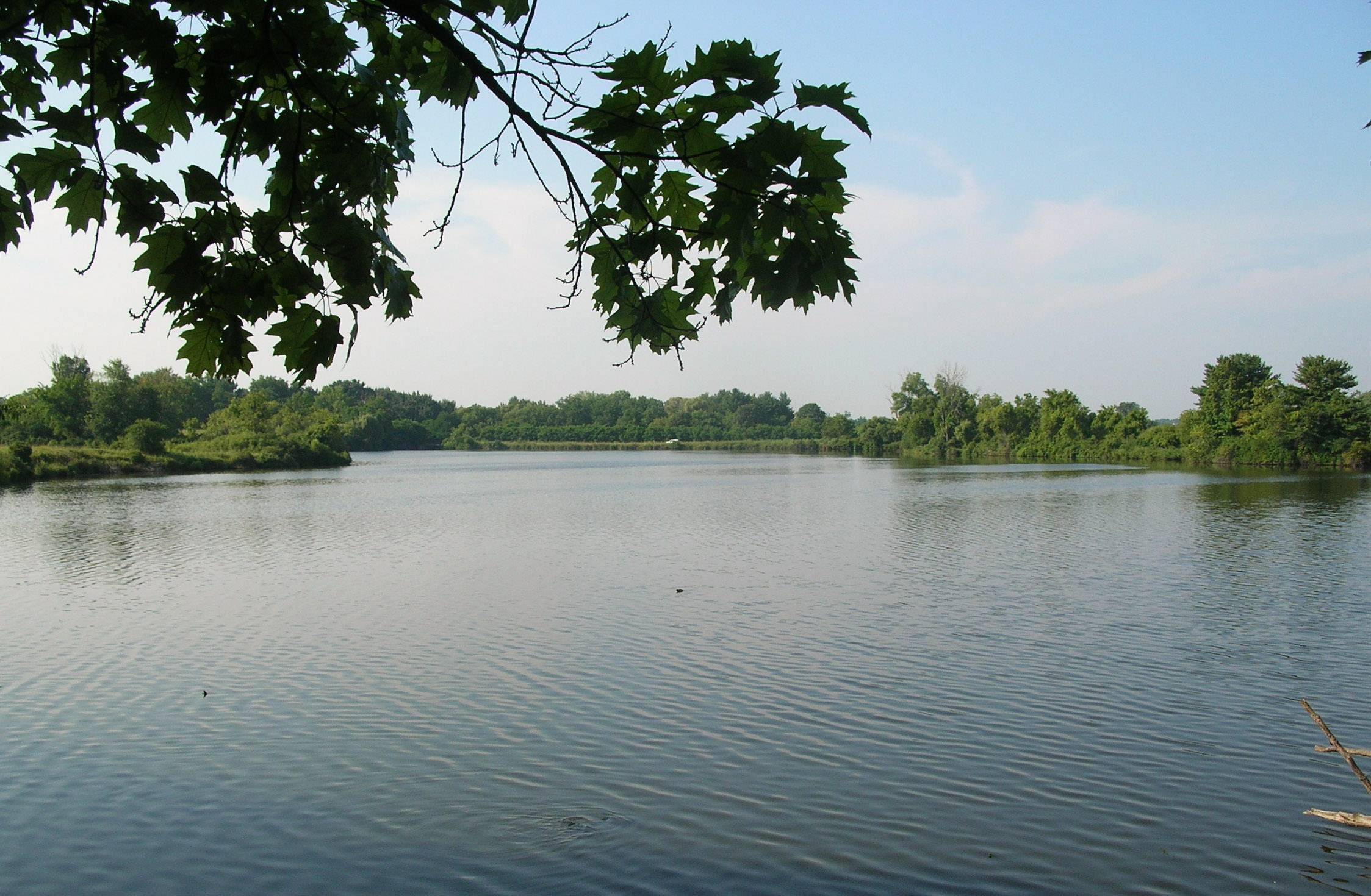 Work to drain Rasmussen Lake in the Ethel´s Woods Forest Preserve near Antioch is set to begin.