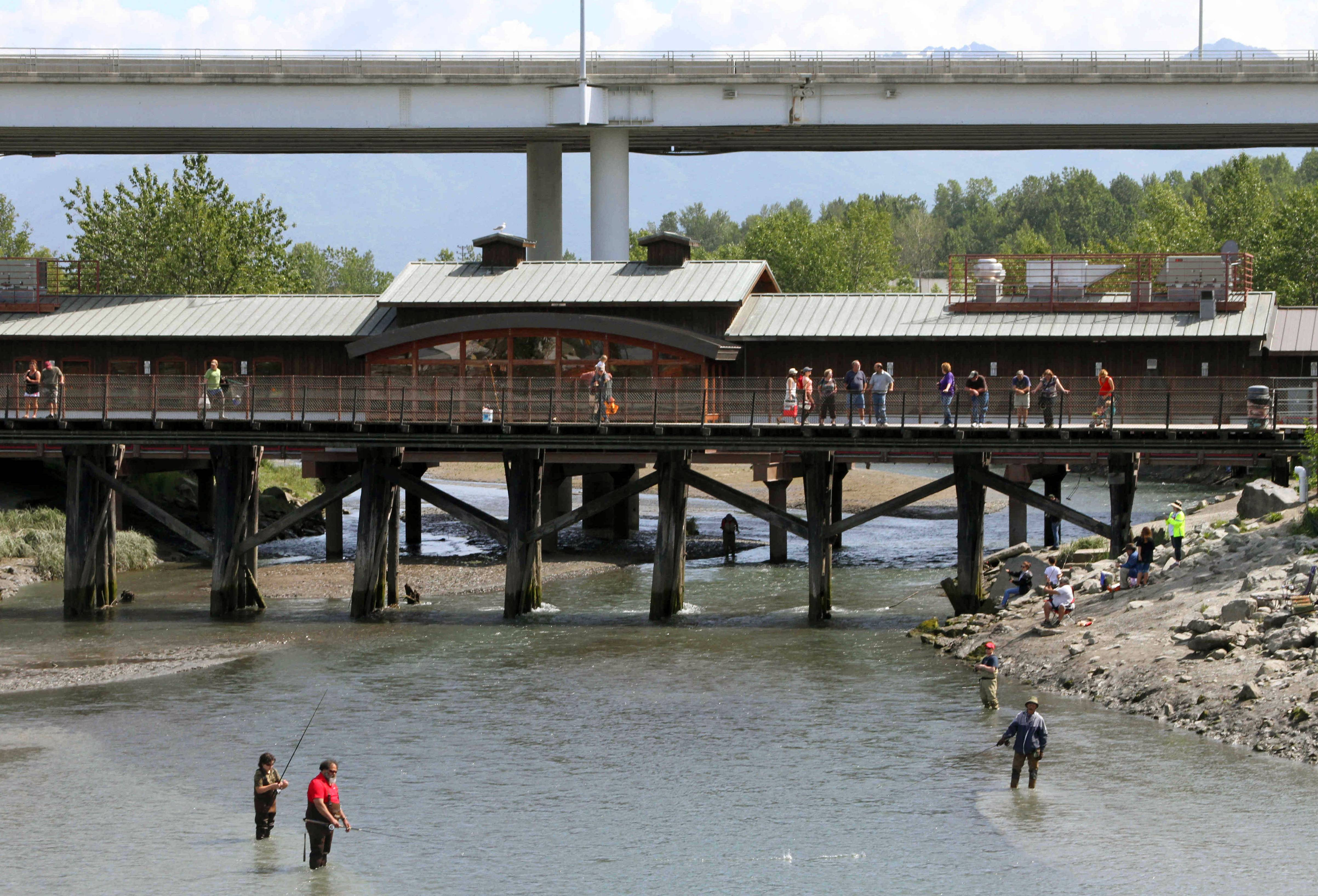 People watch fishermen angle for salmon on Ship Creek from pedestrian bridges in downtown Anchorage, Alaska.