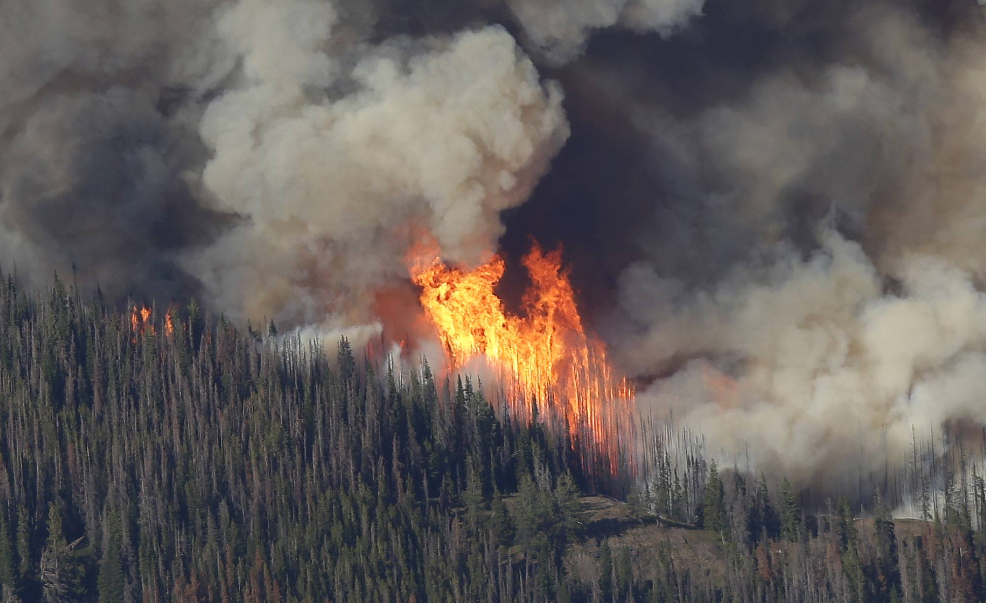 Flames burn trees in the Chiwaukum Creek Fire as seen from the air near Leavenworth, Wash., Thursday. The blaze closed a section of U.S. Highway 2, and resulted in the evacuation of nearly 900 homes.