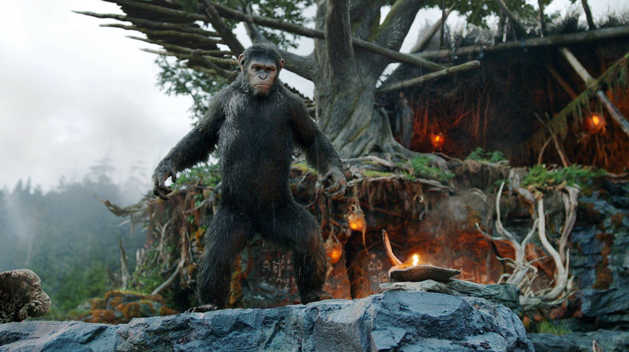 "Andy Serkis plays Caesar in the film, ""Dawn of the Planet of the Apes."""