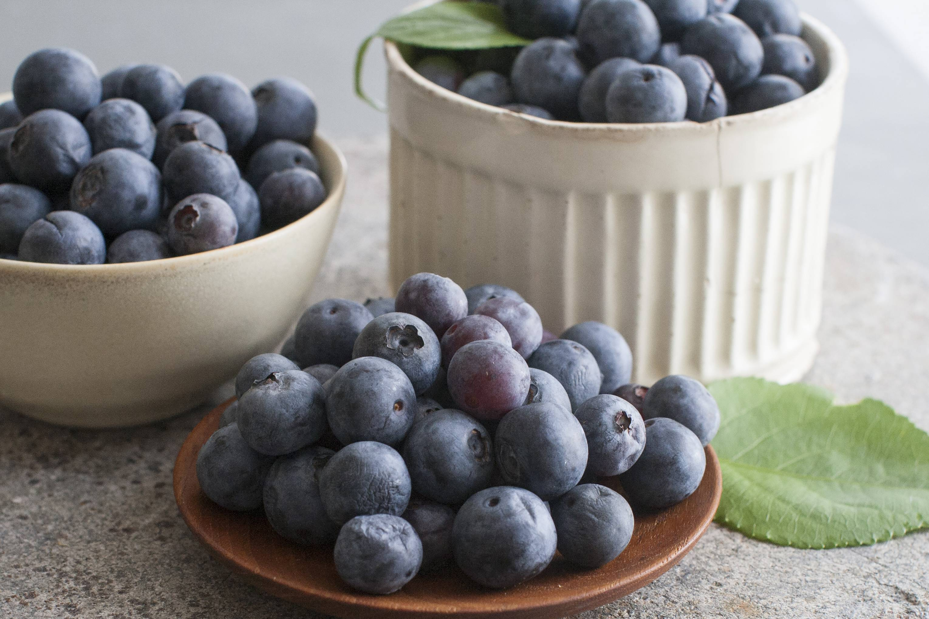 Take a fresh approach to the season's best blueberries; use them in salsa or in a sandwich spread.