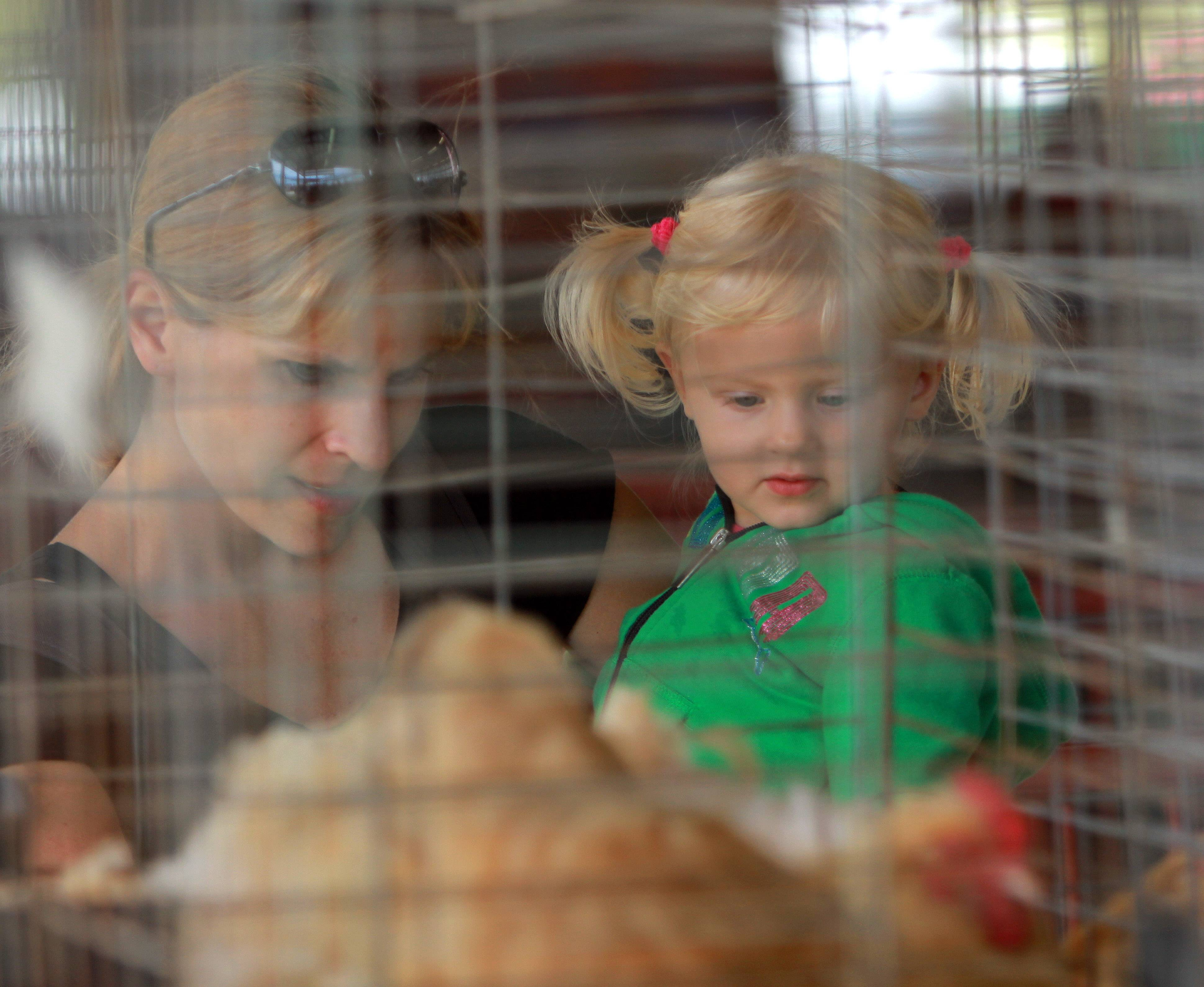 Nicki Dufalt, left, of Grayslake and her two-year-old daughter Kenzie look at chickens.