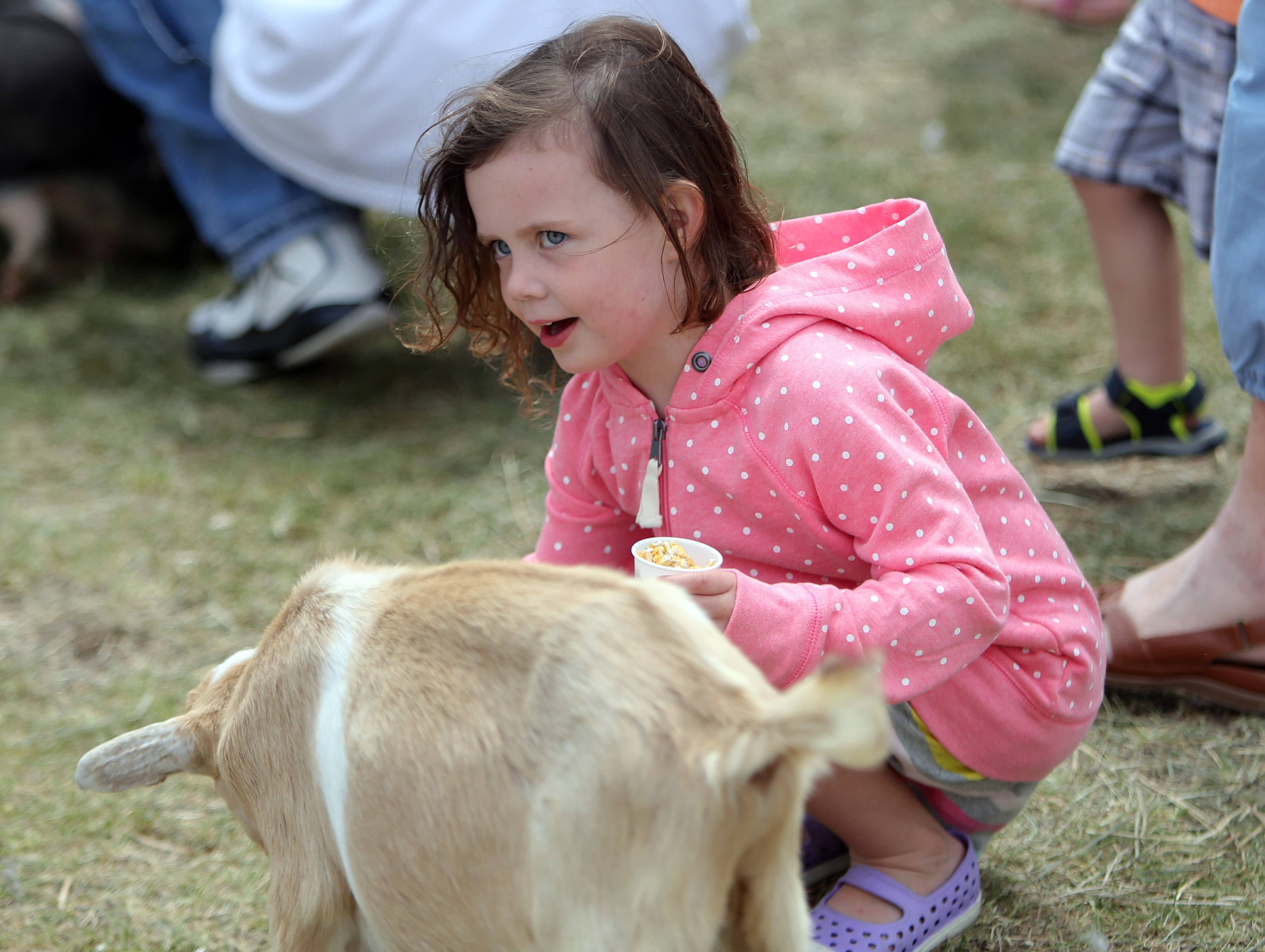 Elsa Mader, 4, of Grayslake pets a baby goat in the petting zoo.