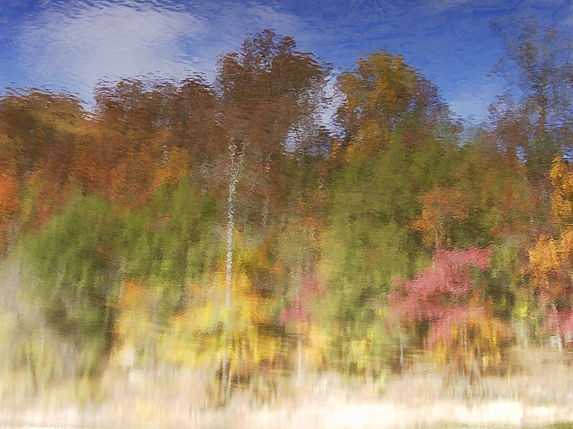 Woods are reflected in Sugar Creek at Turkey Run State Park, Indiana on October 28, 2002.
