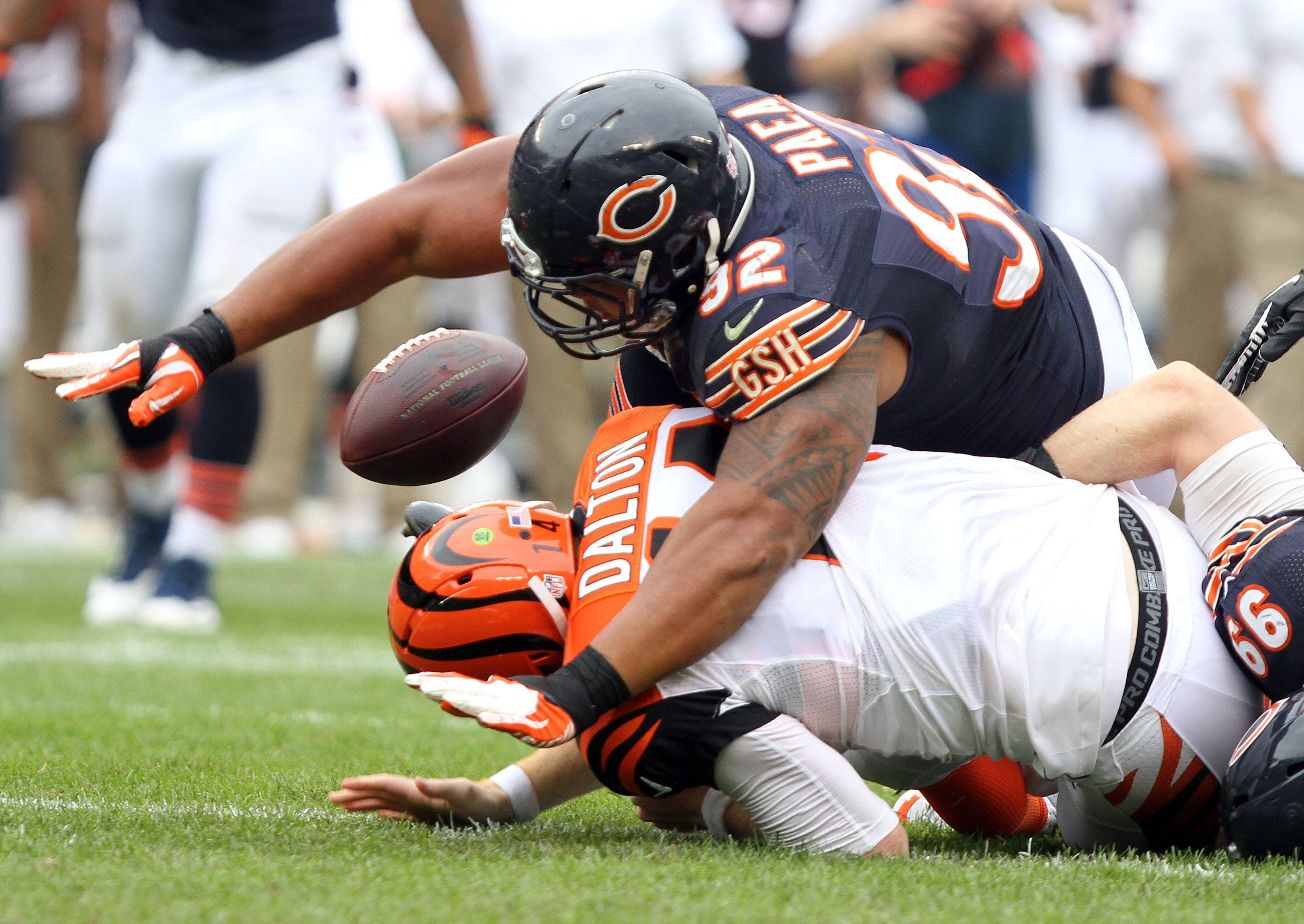 Nose tackle Stephen Paea, forcing a fumble by Bengals quarterback Andy Dalton last season, understands this is an important season for him and his future with the Bears.