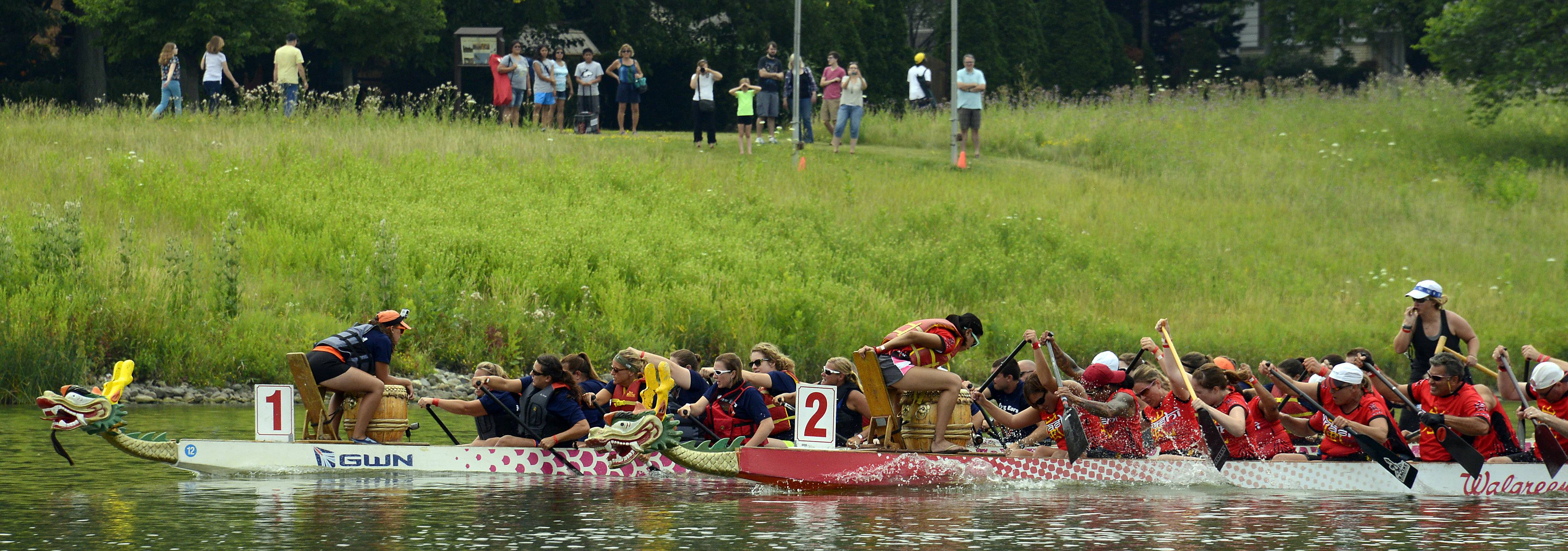 Crowds watch from shore as the dragon boat teams race toward the finish line Saturday at the Walgreens Chicago International Dragon Boat Festival at Lake Arlington.