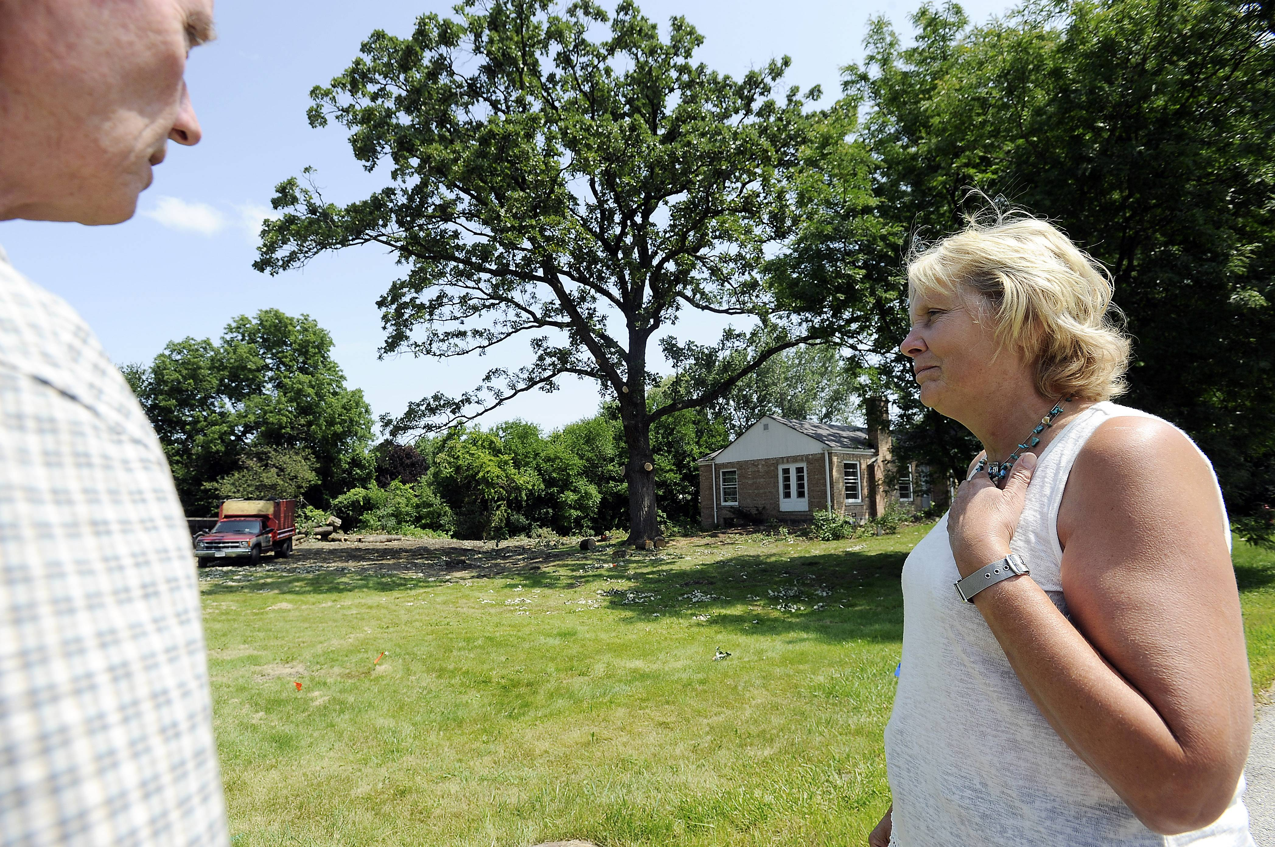 Joanne Kroll and her neighbor Stanley Reynolds tried to stop the removal of trees from land near their Rolling Meadows homes over the weekend. but city officials say the land's owner was within his right to cut down the trees.