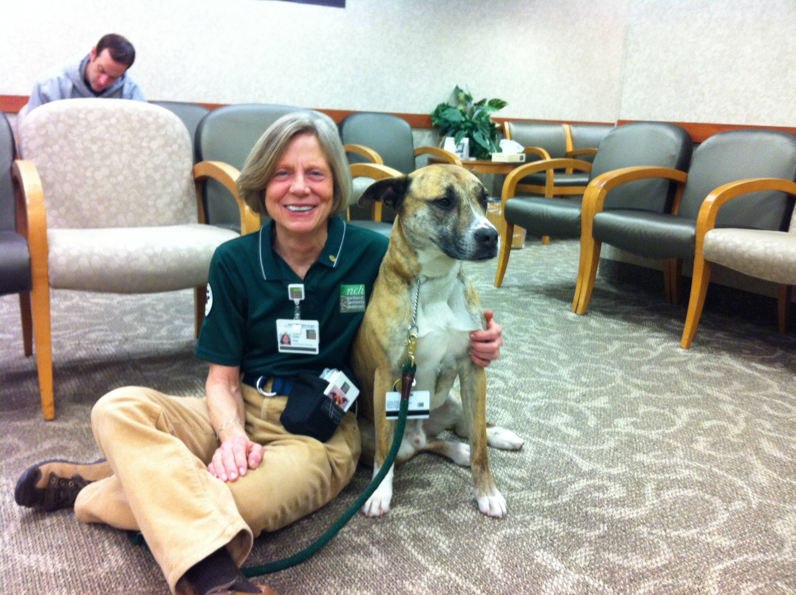 Kathy King, manager of animal-assisted therapy at Northwest Community Hospital in Arlington Heights, with one of the dozens of dogs that visits patients to cheer them up during recovery. The hospital is looking for more dogs and handlers to join the program.