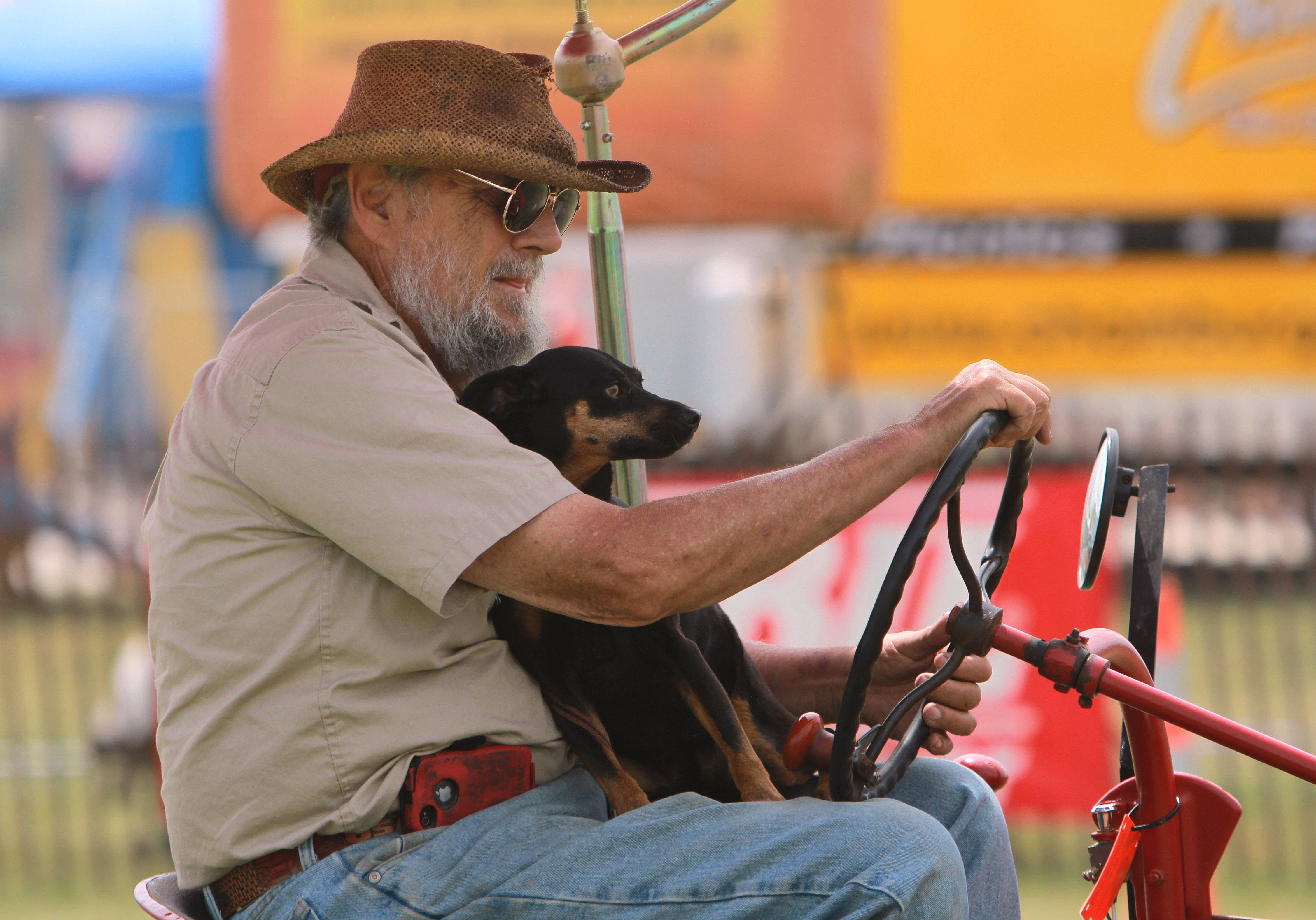 John Bauer, of Lake Zurich, drives his tractor with his dog Isabell Friday at the Lake County Fair in Grayslake.