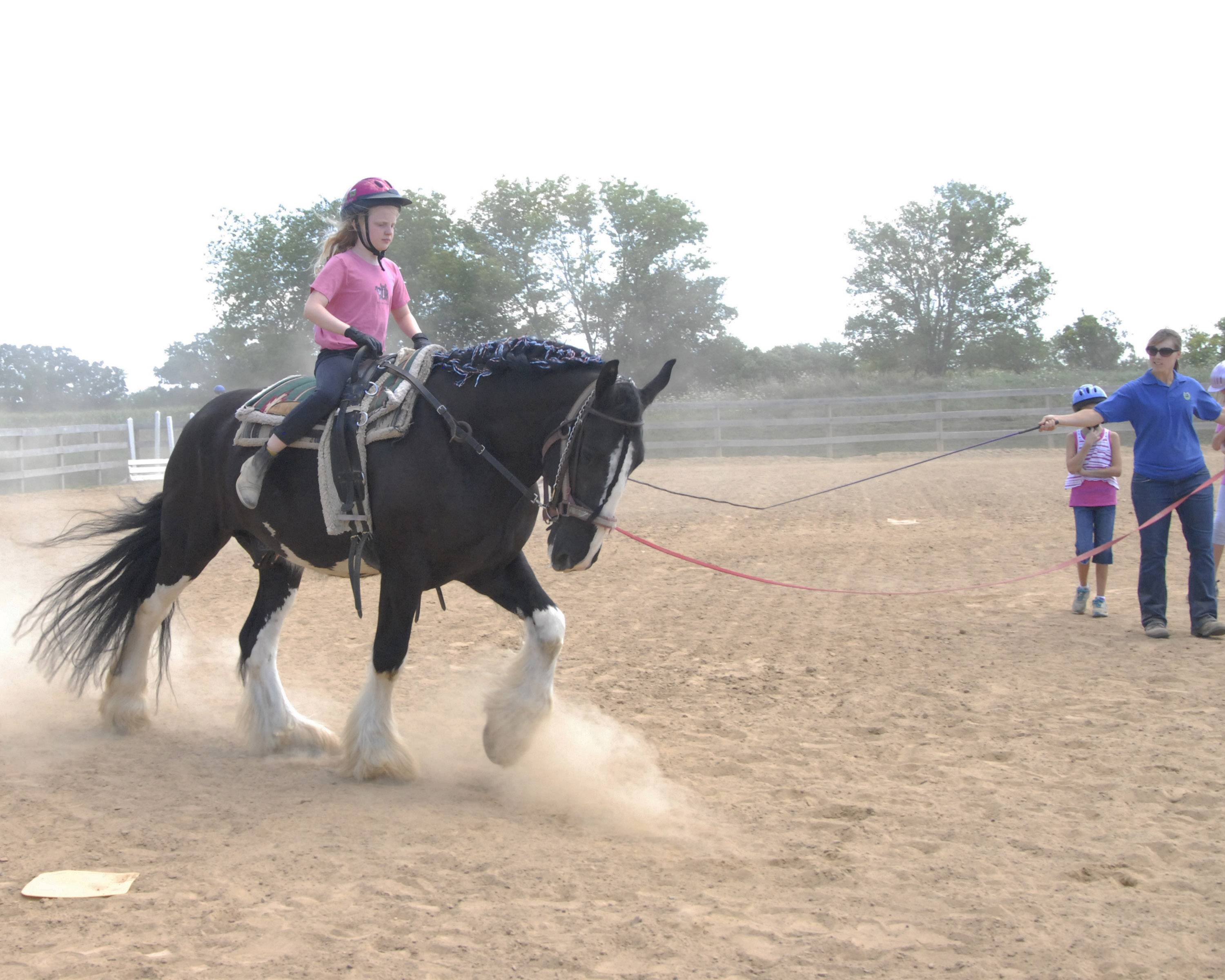 Partners for Progress is a nonprofit therapeutic riding center for individuals who have special needs. The organization helps more than 200 clients each week, 95 percent of whom are younger than 21.